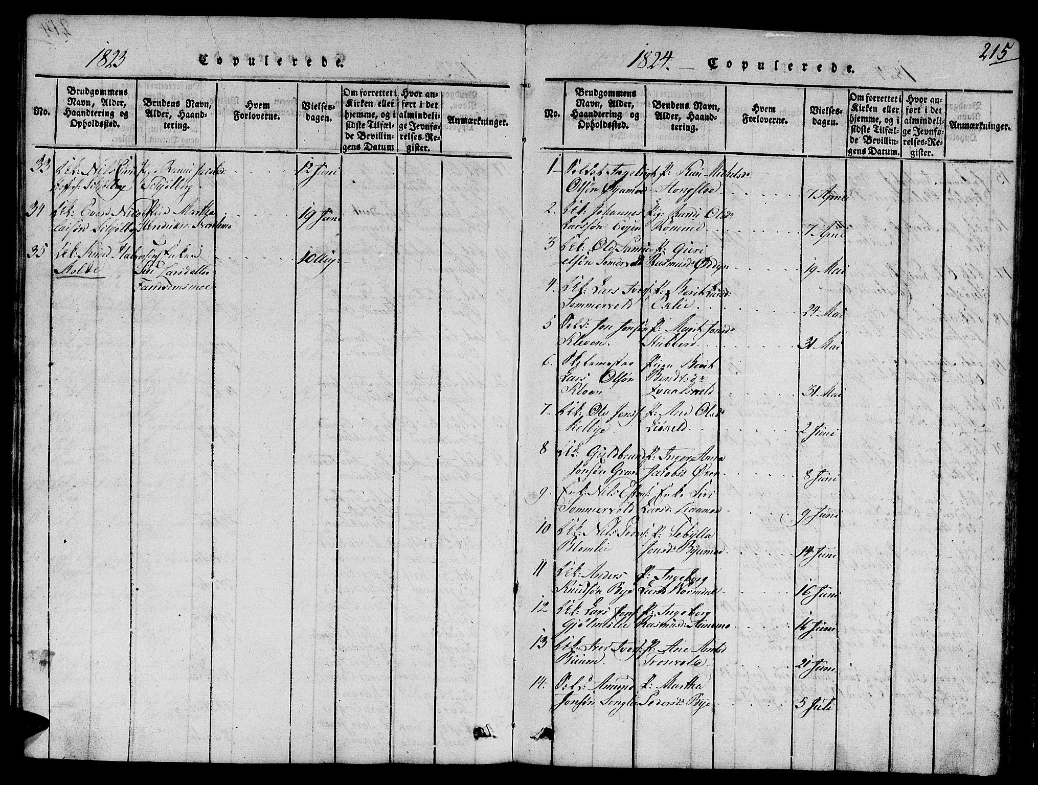 SAT, Ministerialprotokoller, klokkerbøker og fødselsregistre - Sør-Trøndelag, 668/L0803: Ministerialbok nr. 668A03, 1800-1826, s. 215