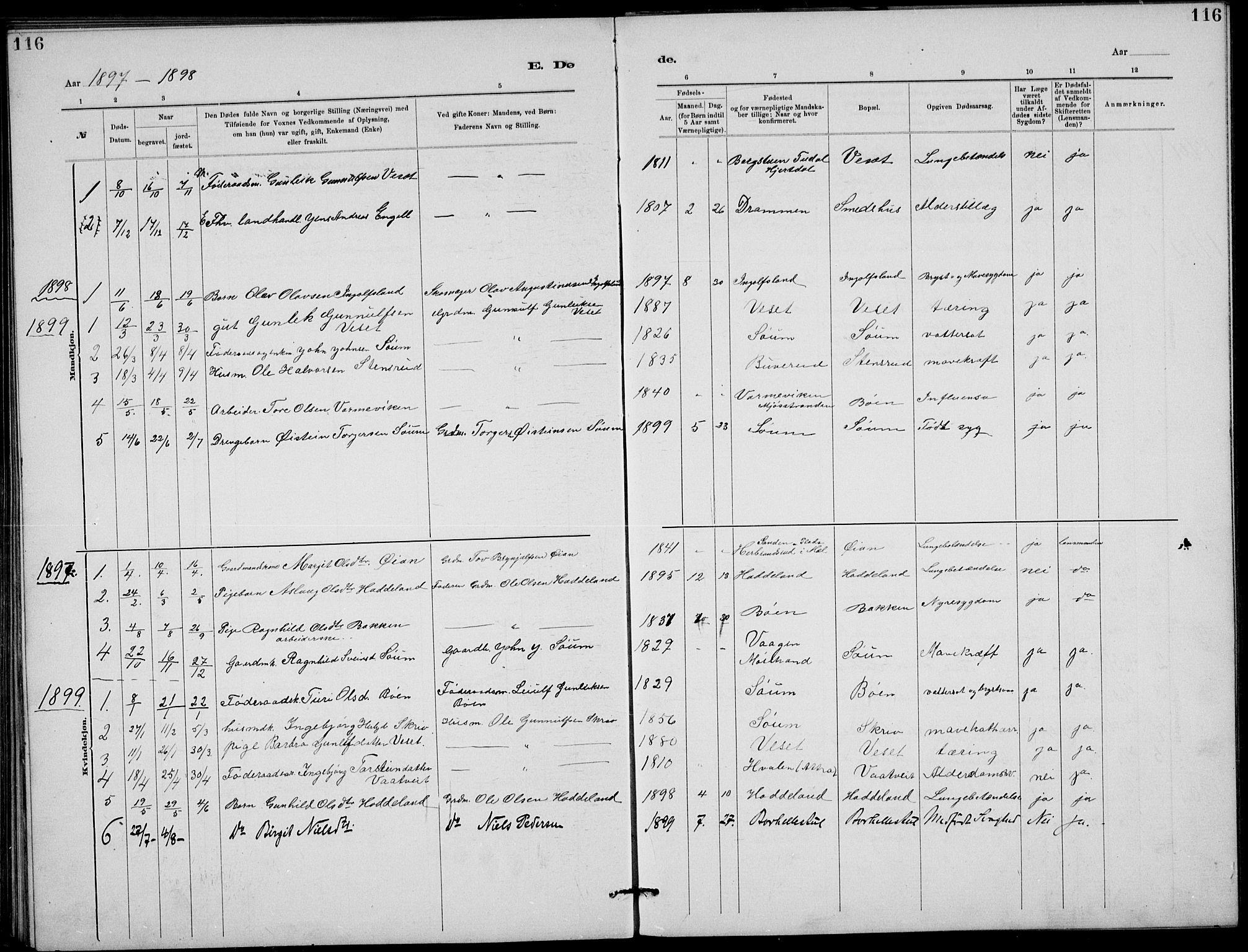 SAKO, Rjukan kirkebøker, G/Ga/L0001: Klokkerbok nr. 1, 1880-1914, s. 116