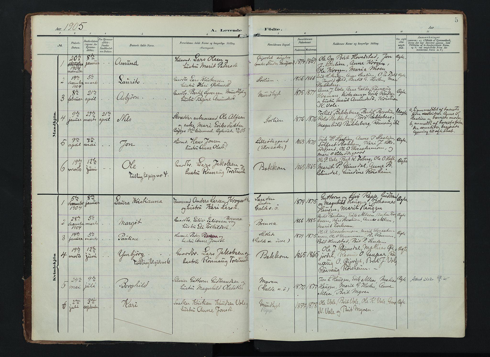 SAH, Lom prestekontor, K/L0012: Ministerialbok nr. 12, 1904-1928, s. 5