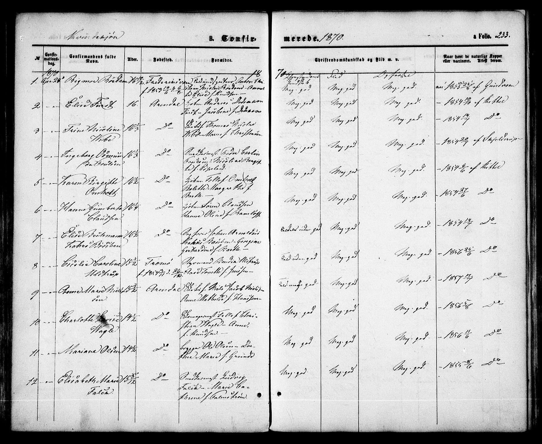 SAK, Arendal sokneprestkontor, Trefoldighet, F/Fa/L0007: Ministerialbok nr. A 7, 1868-1878, s. 233