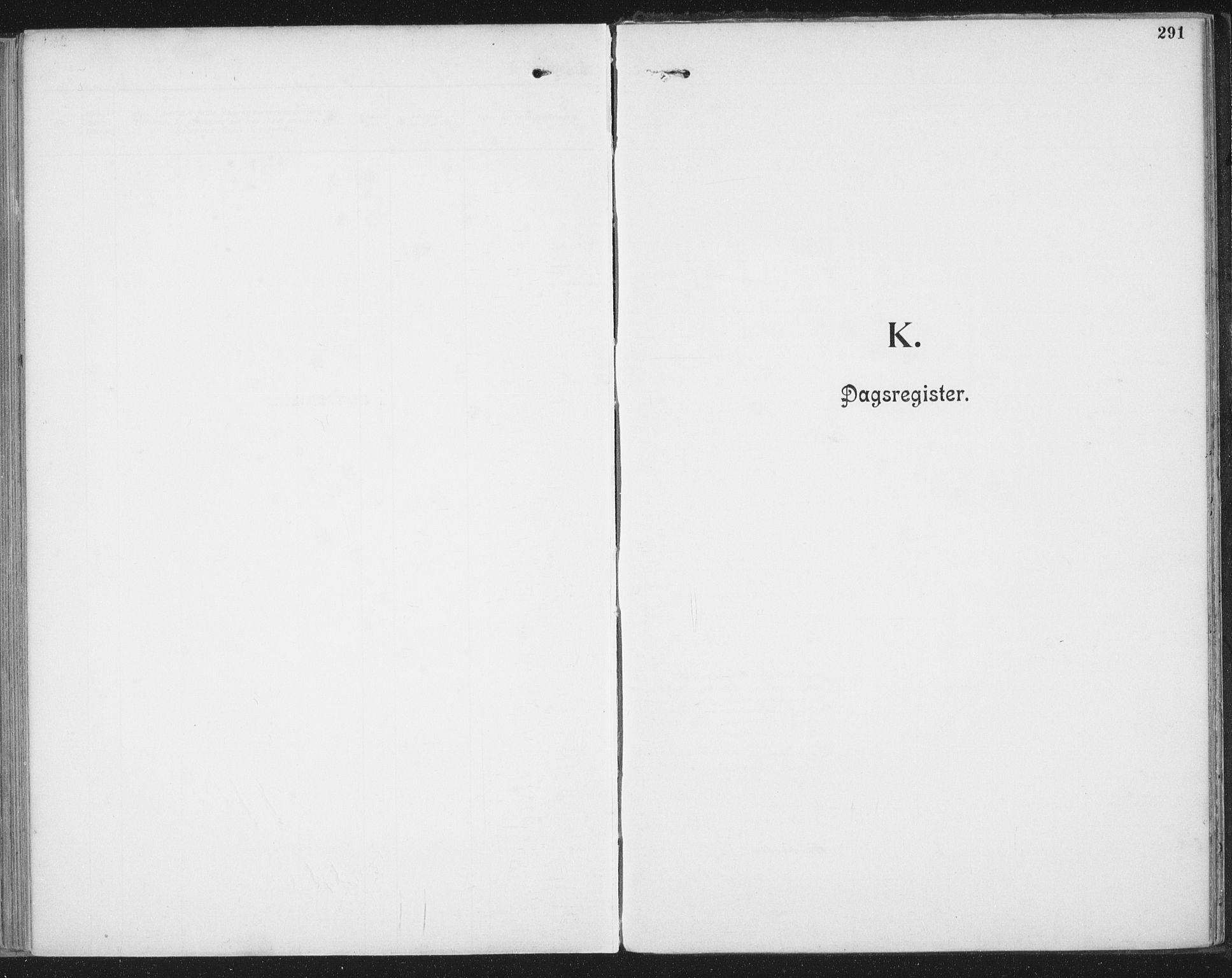 SAT, Ministerialprotokoller, klokkerbøker og fødselsregistre - Nordland, 804/L0081: Ministerialbok nr. 804A02, 1901-1915, s. 291