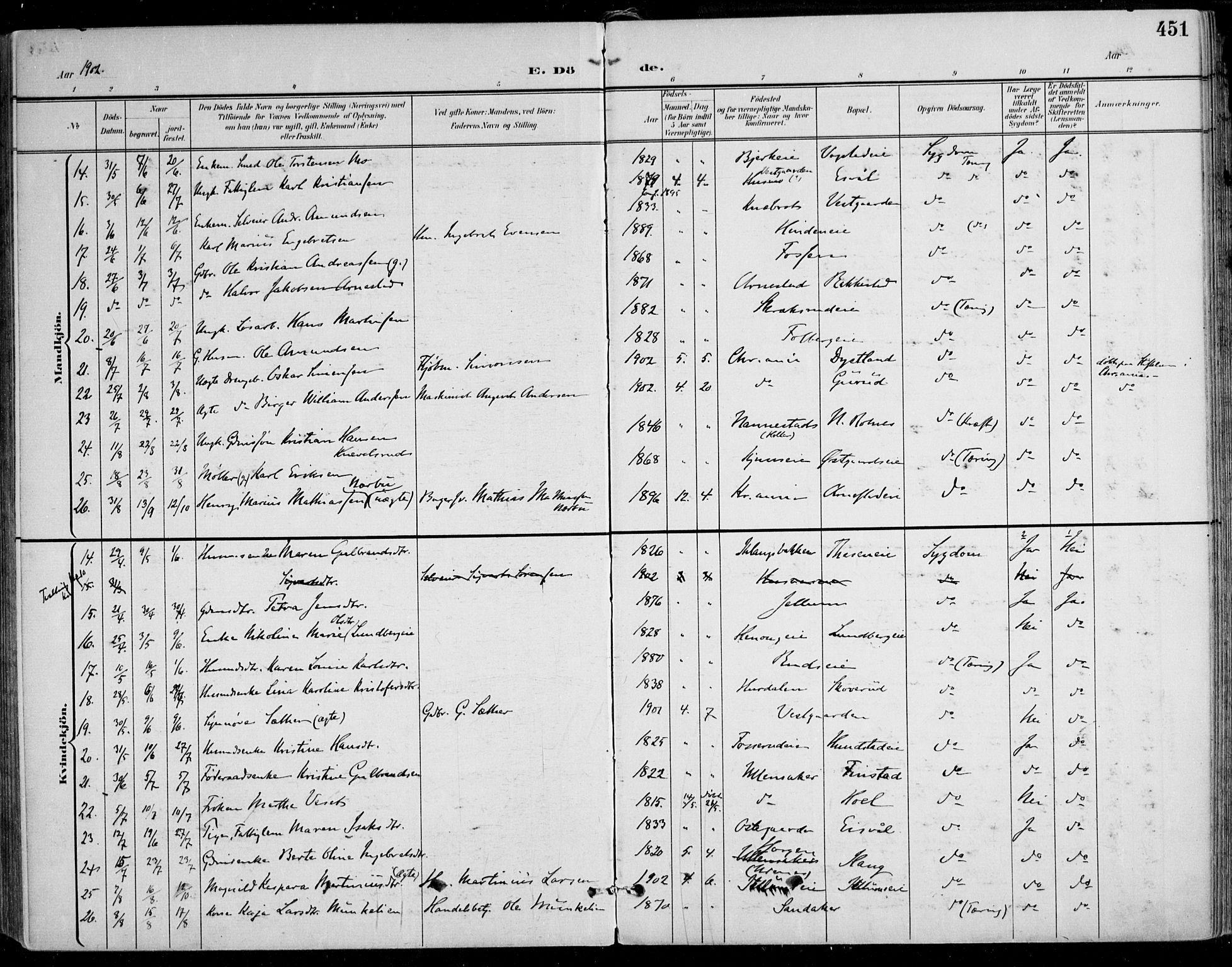 SAO, Nes prestekontor Kirkebøker, F/Fa/L0011: Ministerialbok nr. I 11, 1899-1918, s. 451