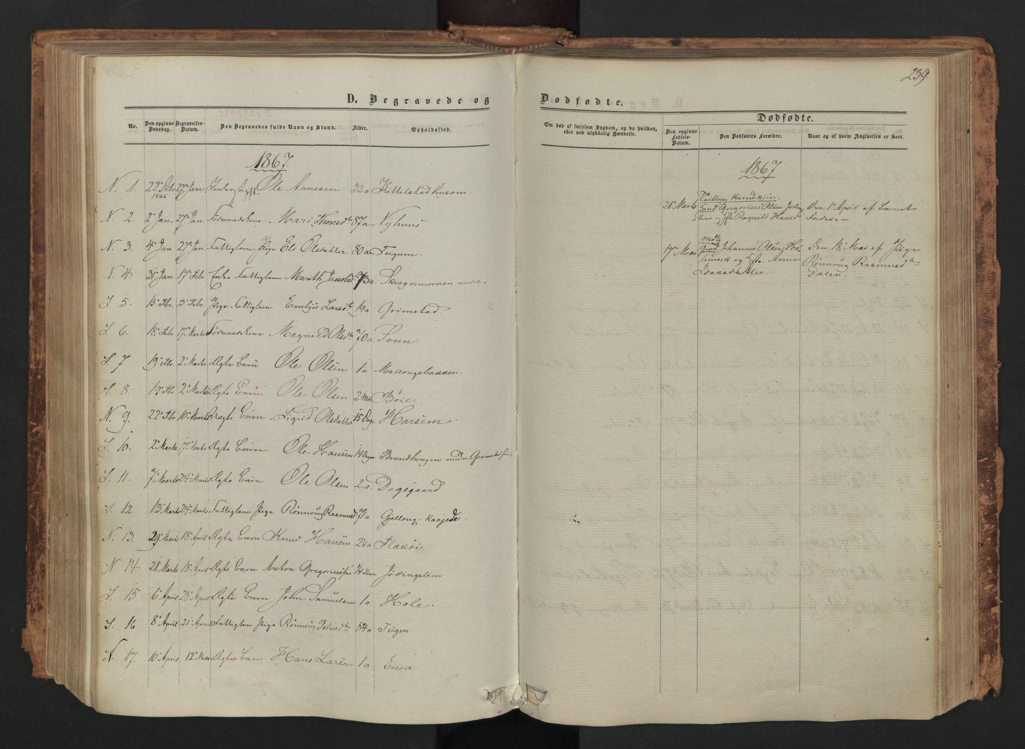 SAH, Skjåk prestekontor, Ministerialbok nr. 1, 1863-1879, s. 239