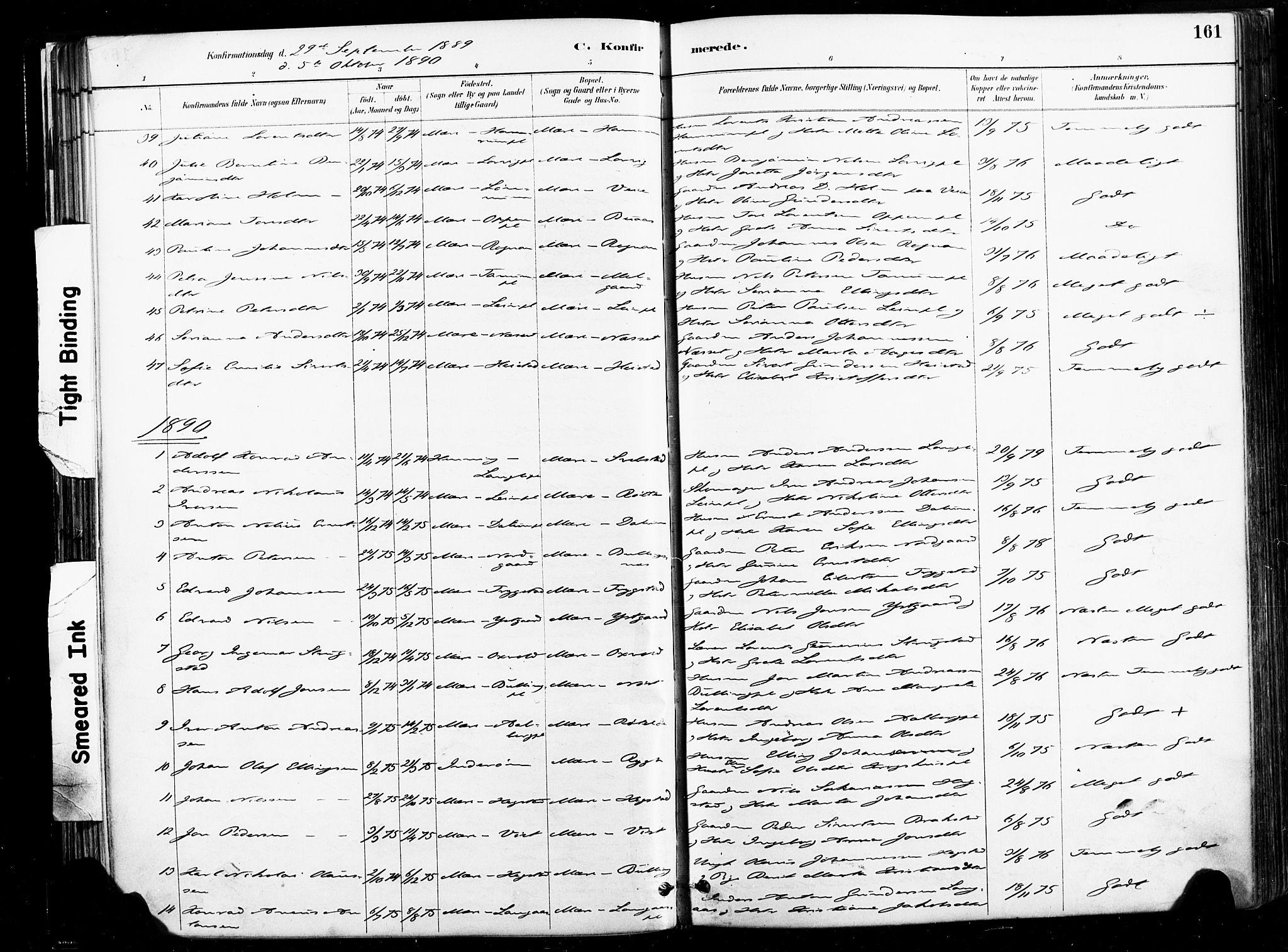 SAT, Ministerialprotokoller, klokkerbøker og fødselsregistre - Nord-Trøndelag, 735/L0351: Ministerialbok nr. 735A10, 1884-1908, s. 161