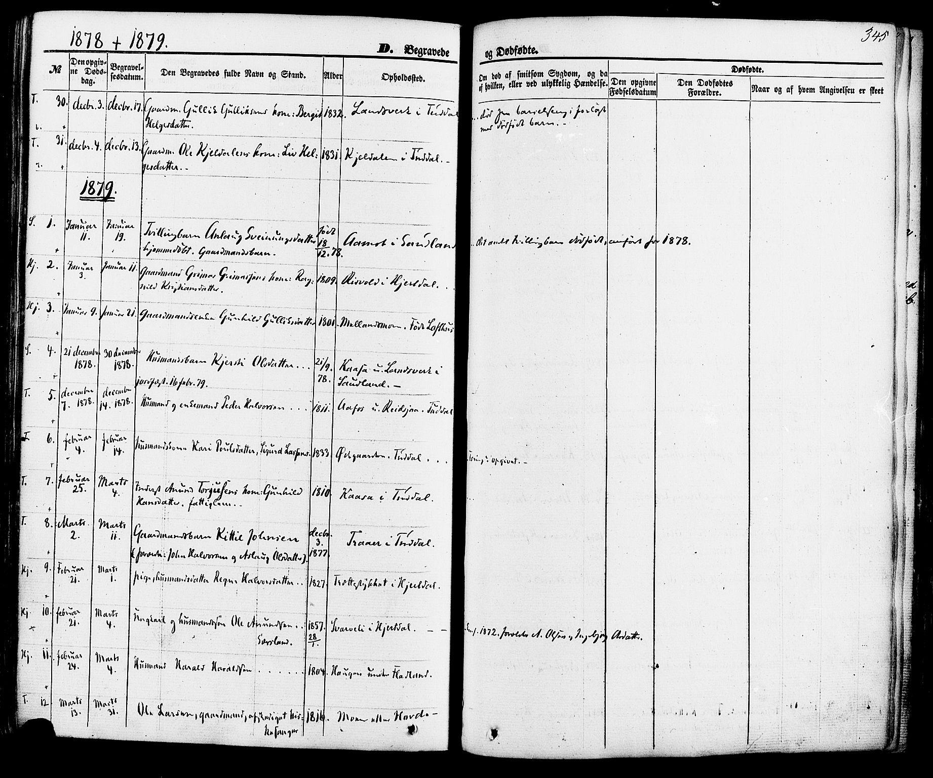 SAKO, Hjartdal kirkebøker, F/Fa/L0009: Ministerialbok nr. I 9, 1860-1879, s. 345