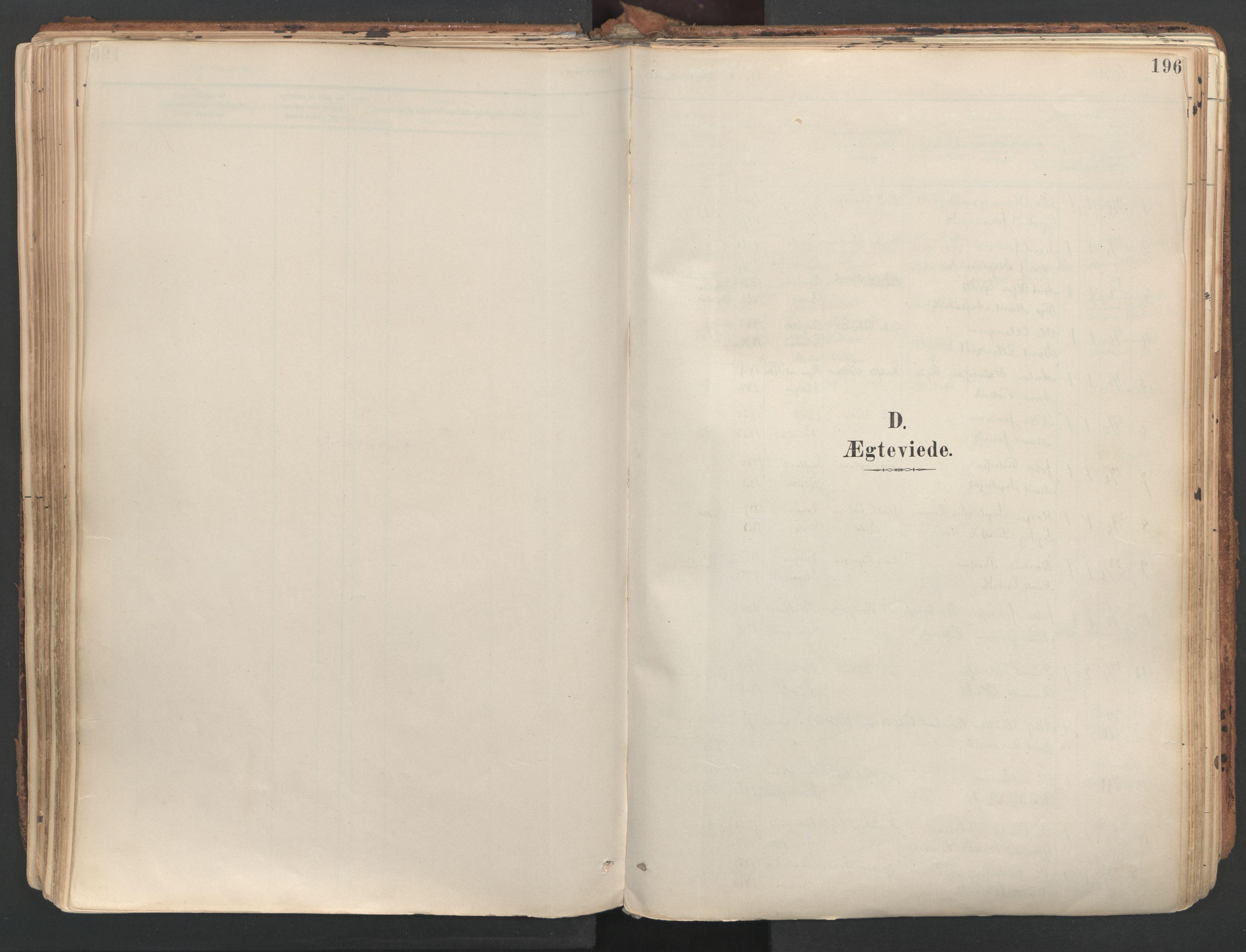 SAT, Ministerialprotokoller, klokkerbøker og fødselsregistre - Sør-Trøndelag, 687/L1004: Ministerialbok nr. 687A10, 1891-1923, s. 196