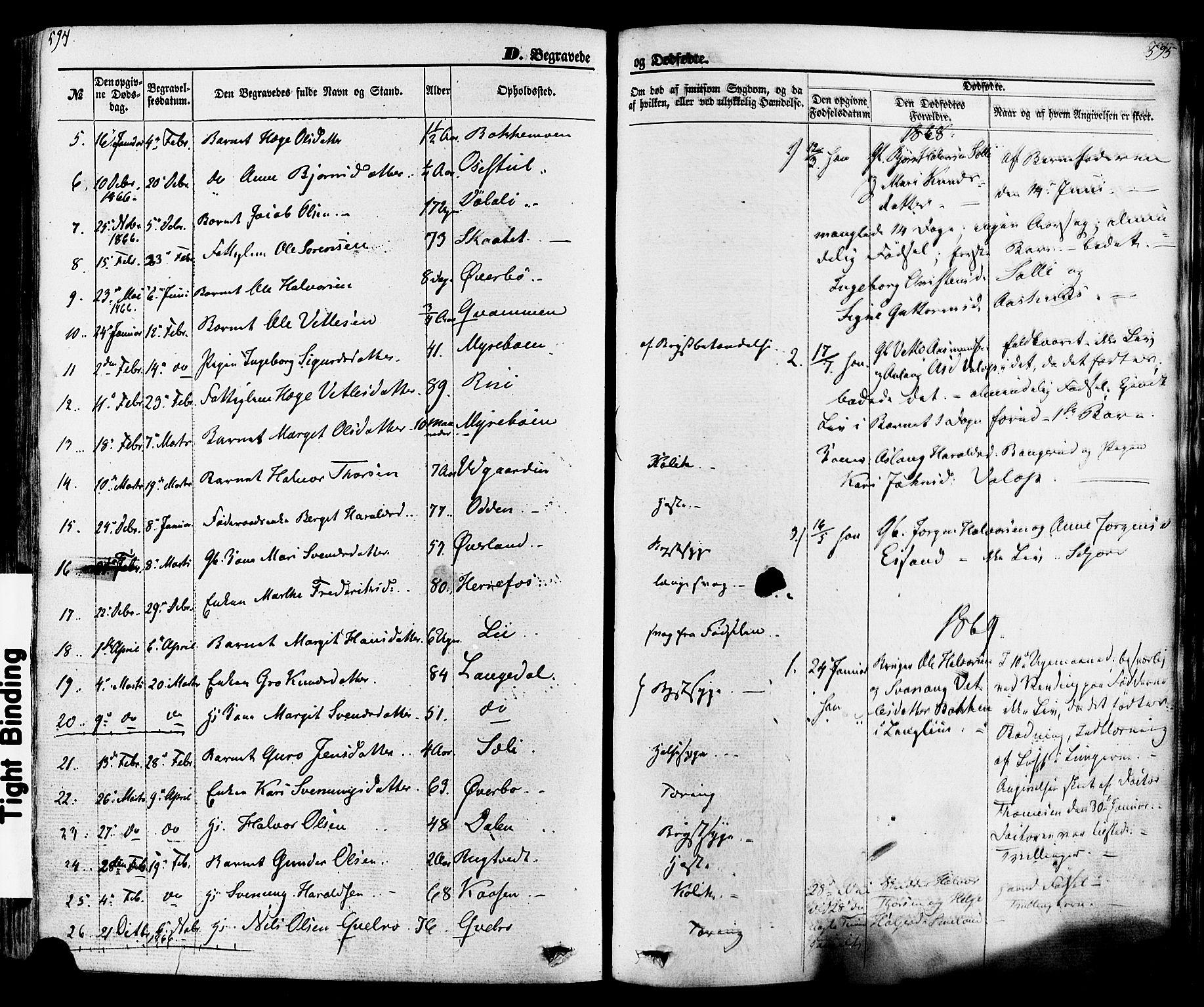 SAKO, Seljord kirkebøker, F/Fa/L0013: Ministerialbok nr. I 13, 1866-1876, s. 594-595