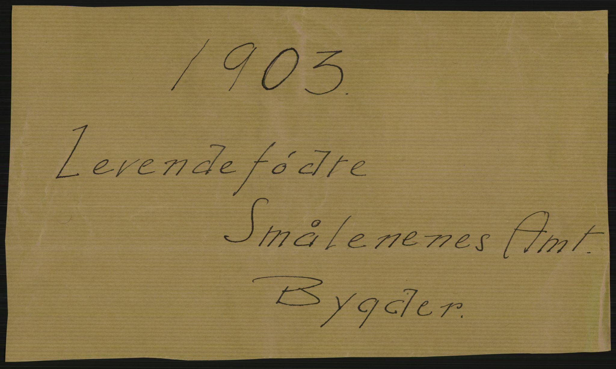 RA, Statistisk sentralbyrå, Sosiodemografiske emner, Befolkning, D/Df/Dfa/Dfaa/L0001: Smålenenes amt: Fødte, gifte, døde, 1903