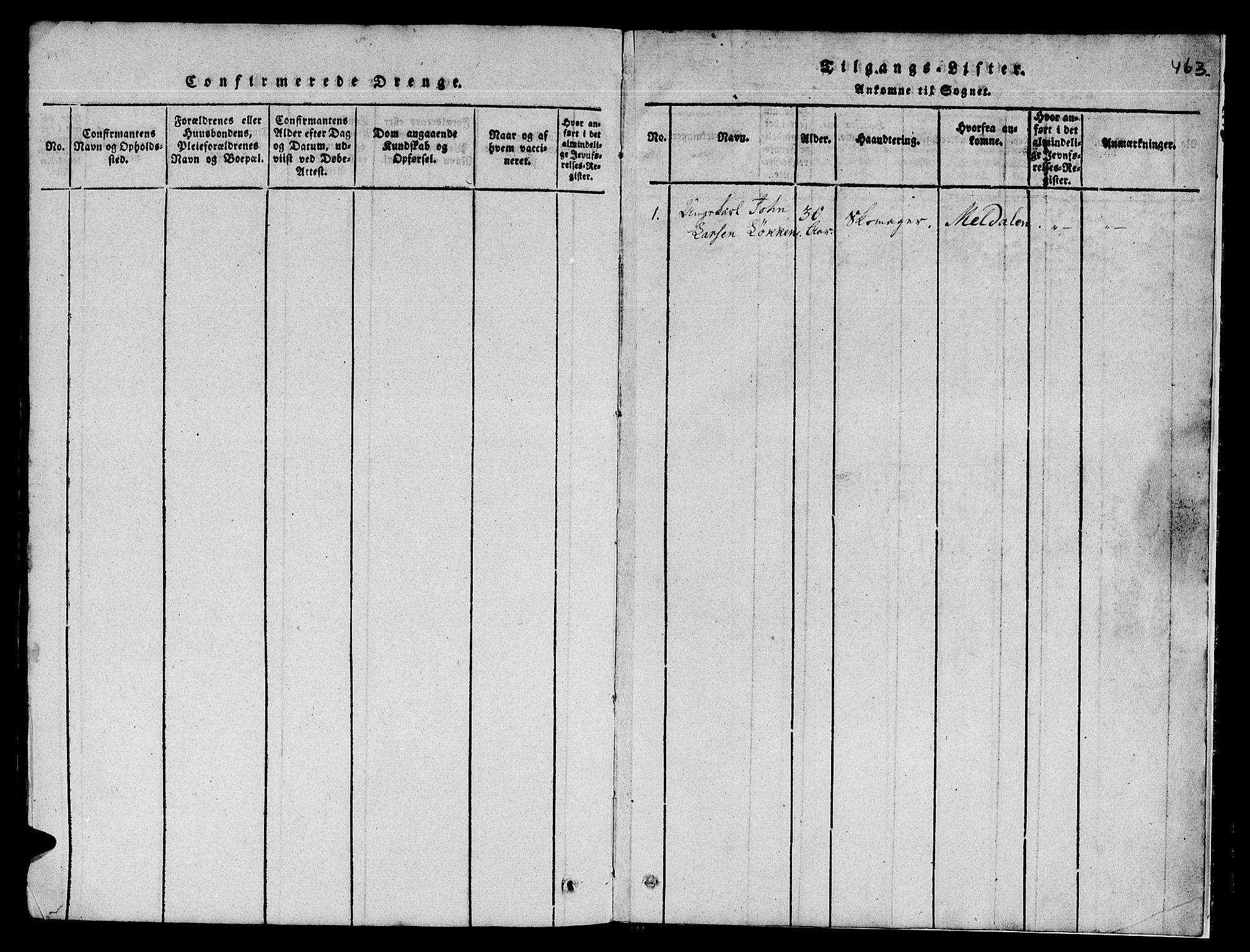 SAT, Ministerialprotokoller, klokkerbøker og fødselsregistre - Sør-Trøndelag, 671/L0842: Klokkerbok nr. 671C01, 1816-1867, s. 462-463