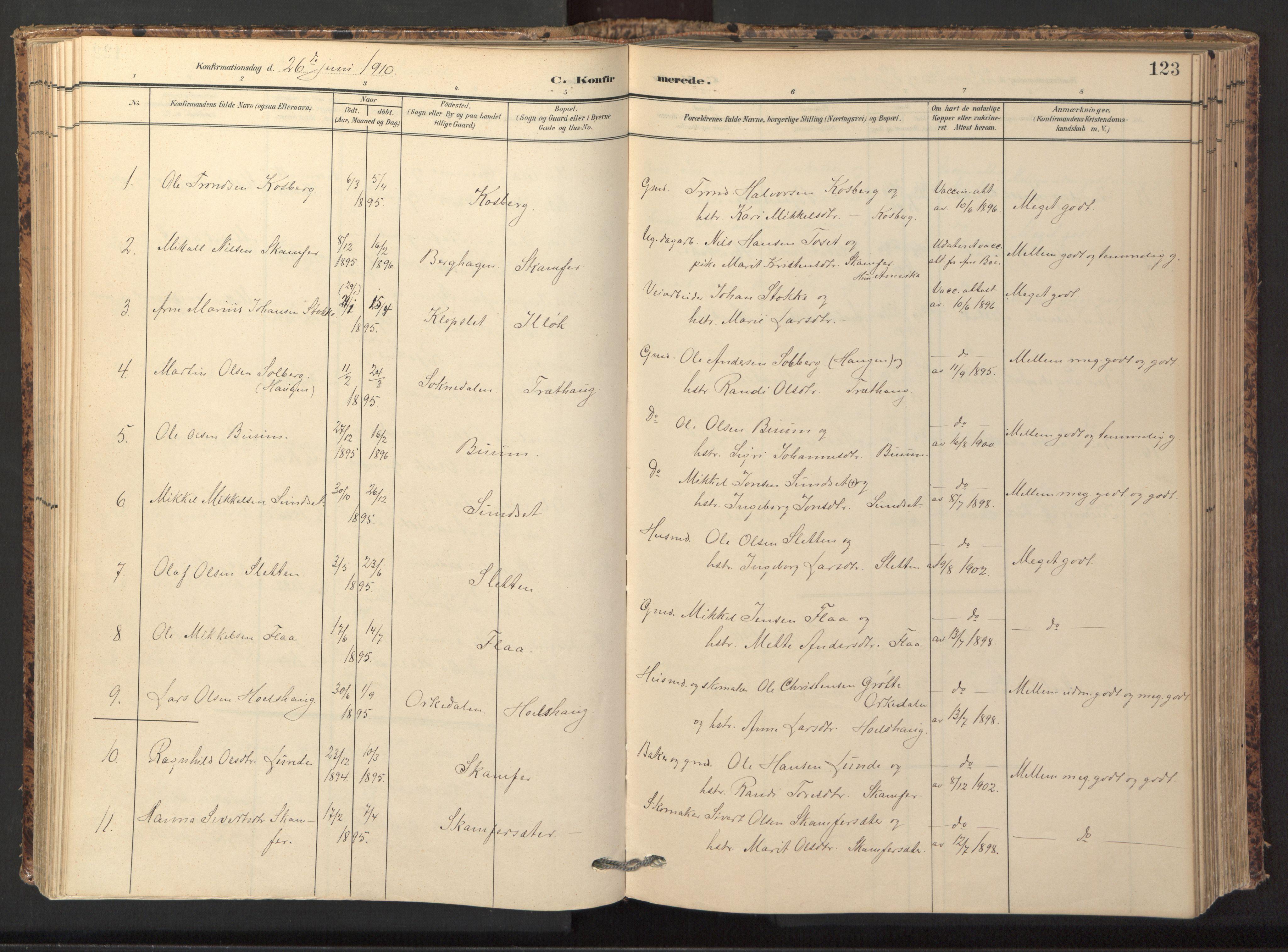 SAT, Ministerialprotokoller, klokkerbøker og fødselsregistre - Sør-Trøndelag, 674/L0873: Ministerialbok nr. 674A05, 1908-1923, s. 123