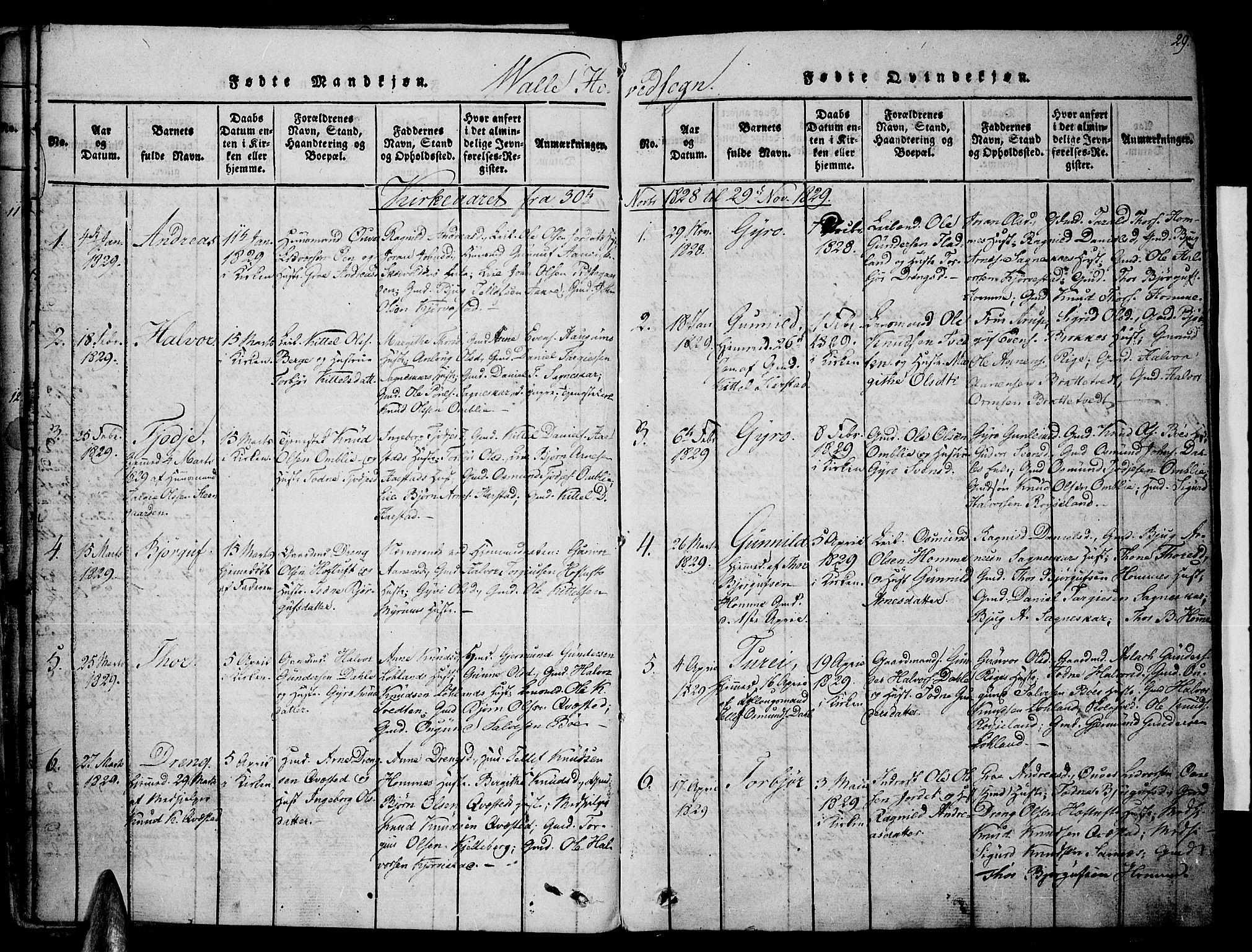 SAK, Valle sokneprestkontor, F/Fa/Fac/L0005: Ministerialbok nr. A 5 /1, 1816-1831, s. 29