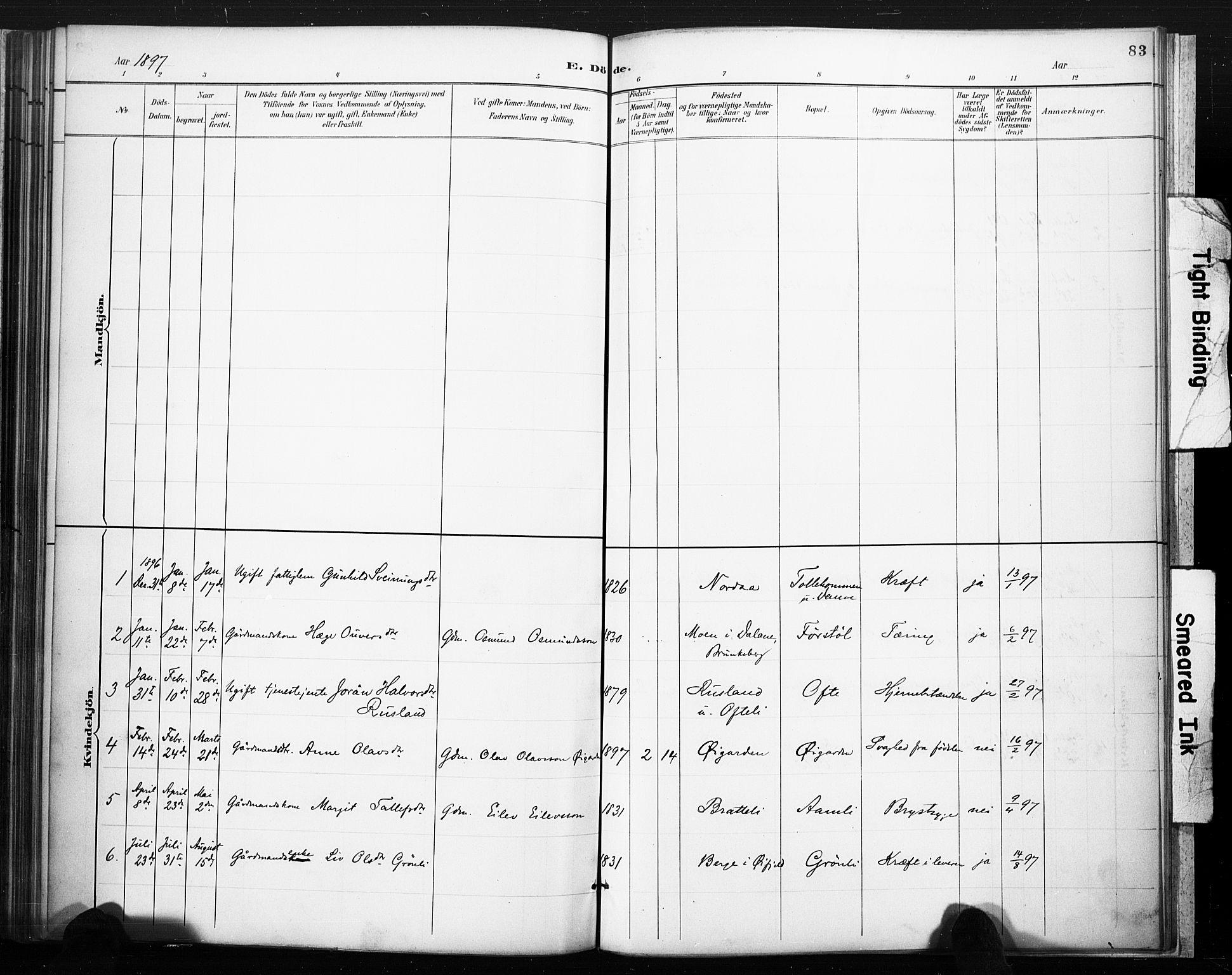 SAKO, Lårdal kirkebøker, F/Fc/L0002: Ministerialbok nr. III 2, 1887-1906, s. 83