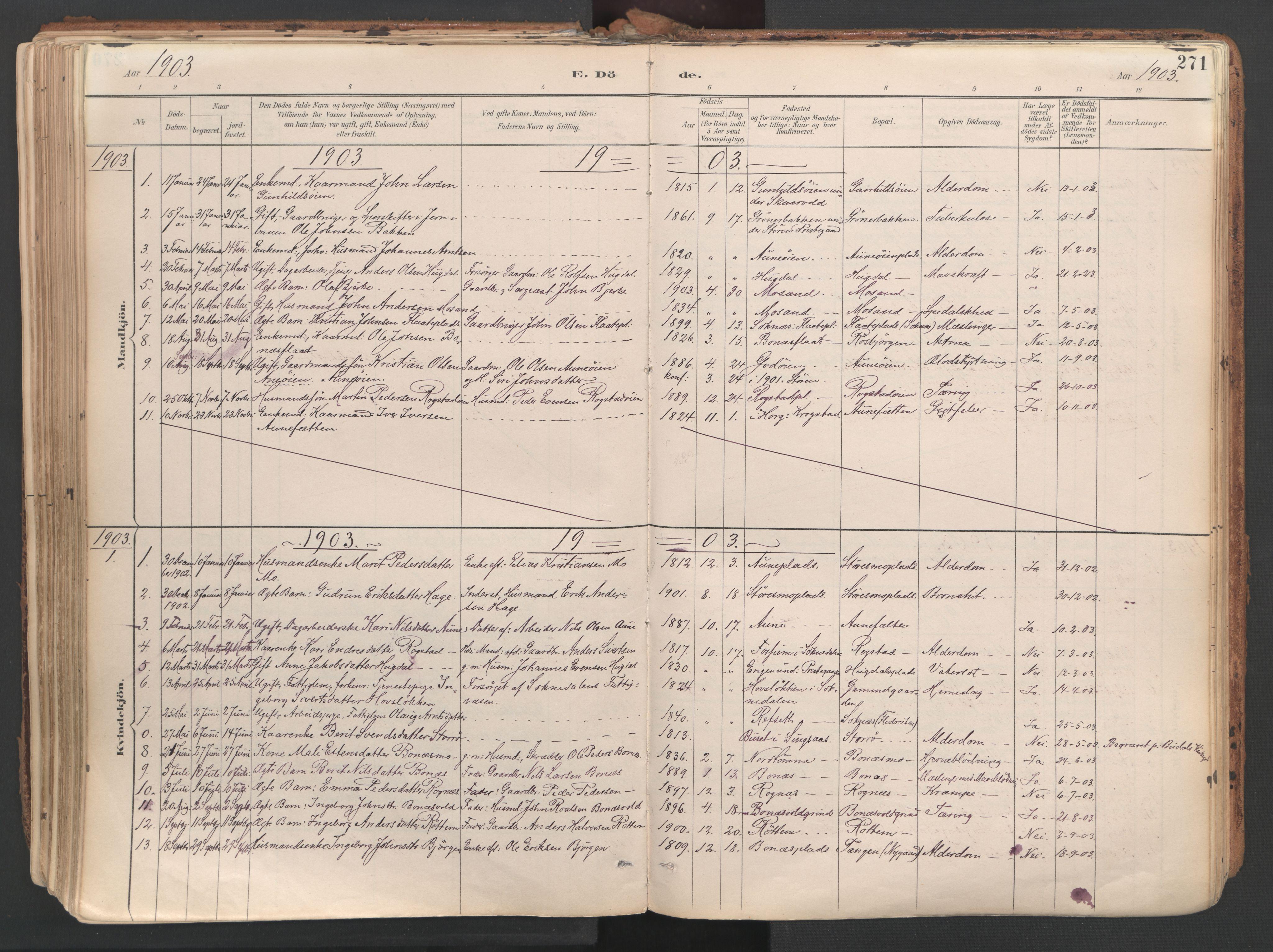SAT, Ministerialprotokoller, klokkerbøker og fødselsregistre - Sør-Trøndelag, 687/L1004: Ministerialbok nr. 687A10, 1891-1923, s. 271