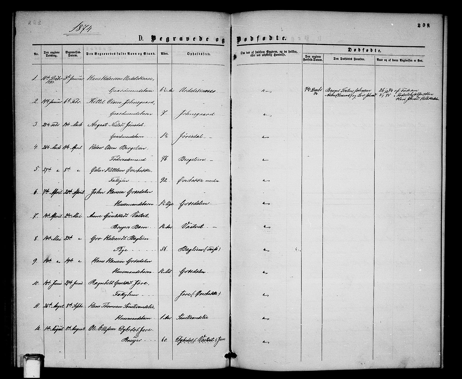 SAKO, Gransherad kirkebøker, G/Gb/L0002: Klokkerbok nr. II 2, 1860-1886, s. 208