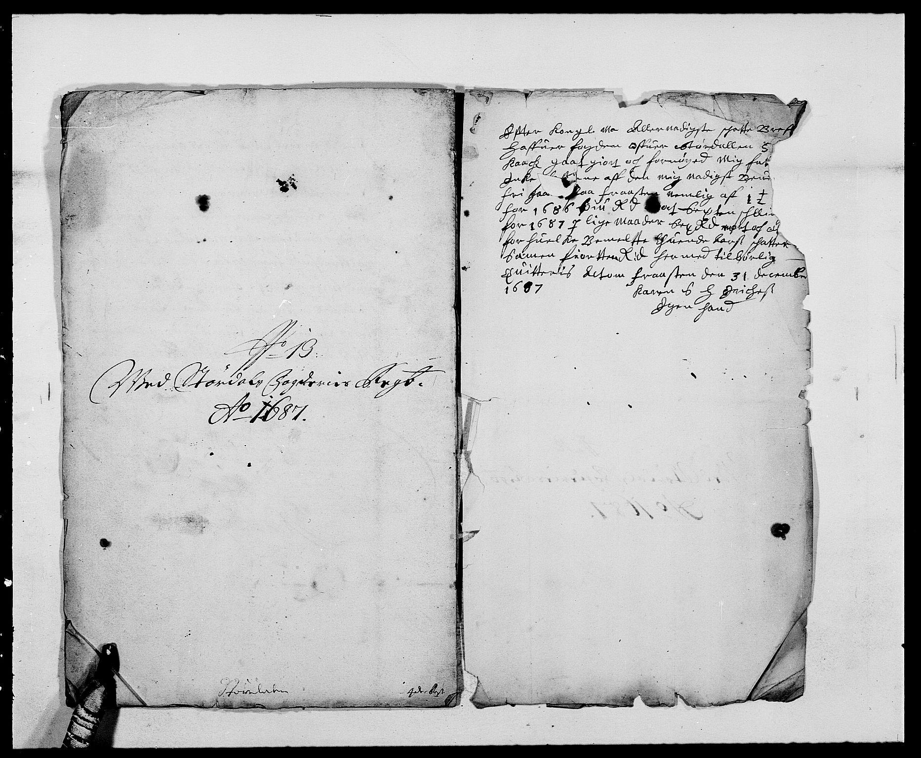 RA, Rentekammeret inntil 1814, Reviderte regnskaper, Fogderegnskap, R62/L4183: Fogderegnskap Stjørdal og Verdal, 1687-1689, s. 194