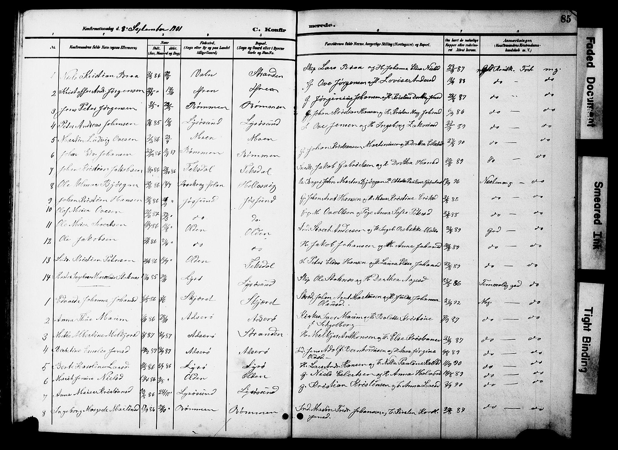 SAT, Ministerialprotokoller, klokkerbøker og fødselsregistre - Sør-Trøndelag, 654/L0666: Klokkerbok nr. 654C02, 1901-1925, s. 85