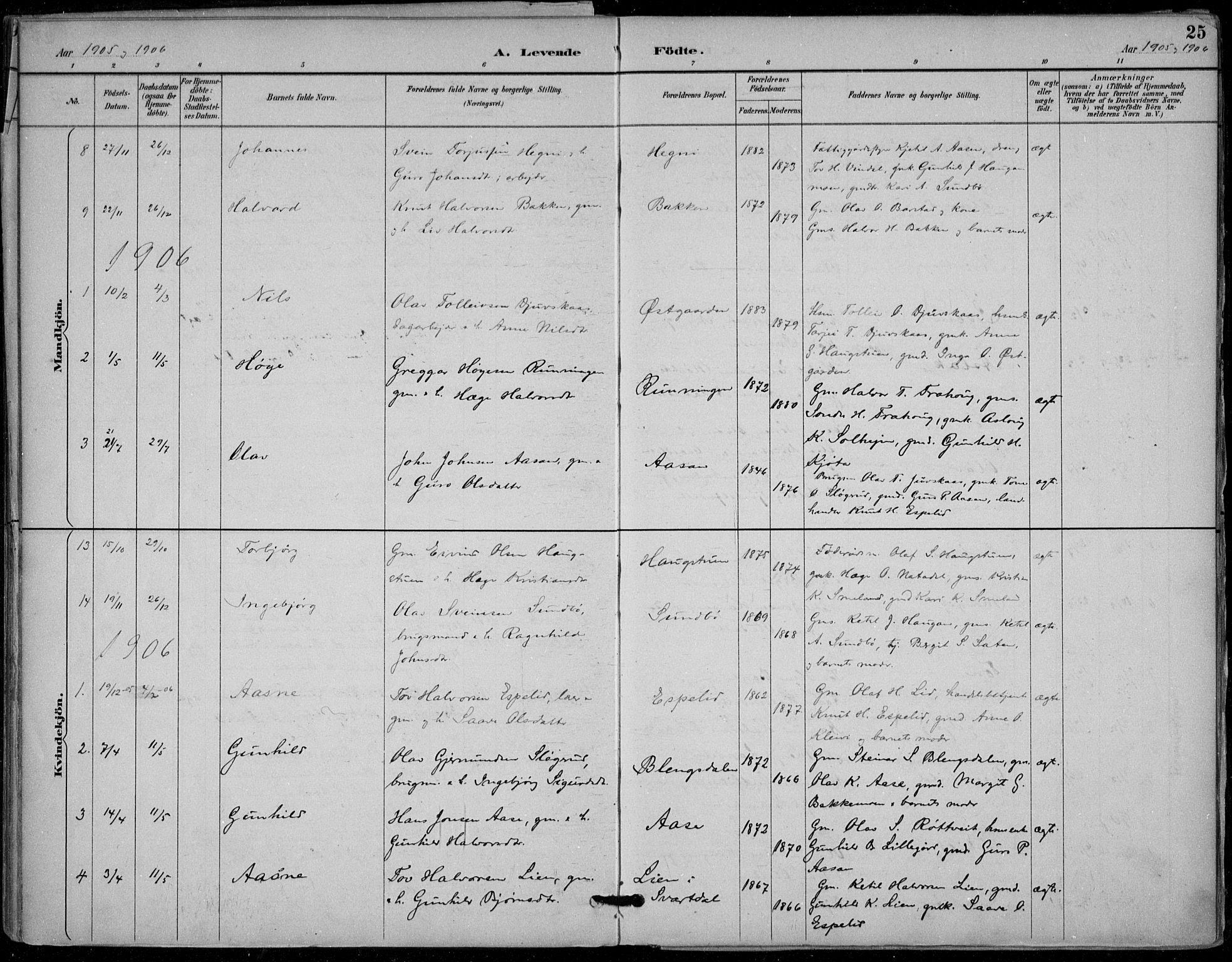 SAKO, Seljord kirkebøker, F/Fb/L0002: Ministerialbok nr. II 2, 1887-1917, s. 25