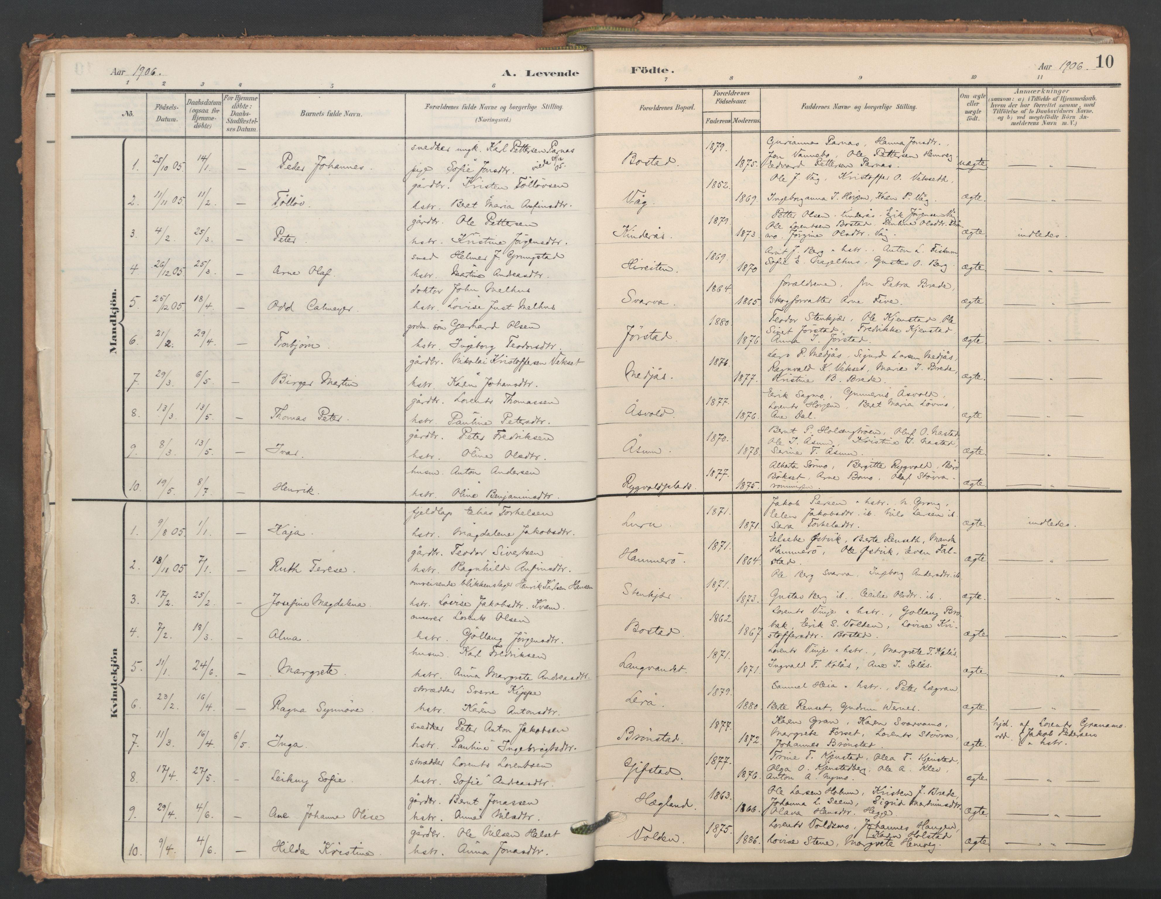 SAT, Ministerialprotokoller, klokkerbøker og fødselsregistre - Nord-Trøndelag, 749/L0477: Ministerialbok nr. 749A11, 1902-1927, s. 10