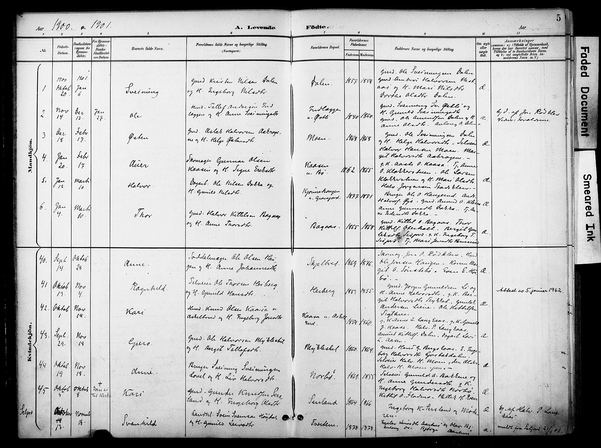 SAKO, Bø kirkebøker, F/Fa/L0012: Ministerialbok nr. 12, 1900-1908, s. 5