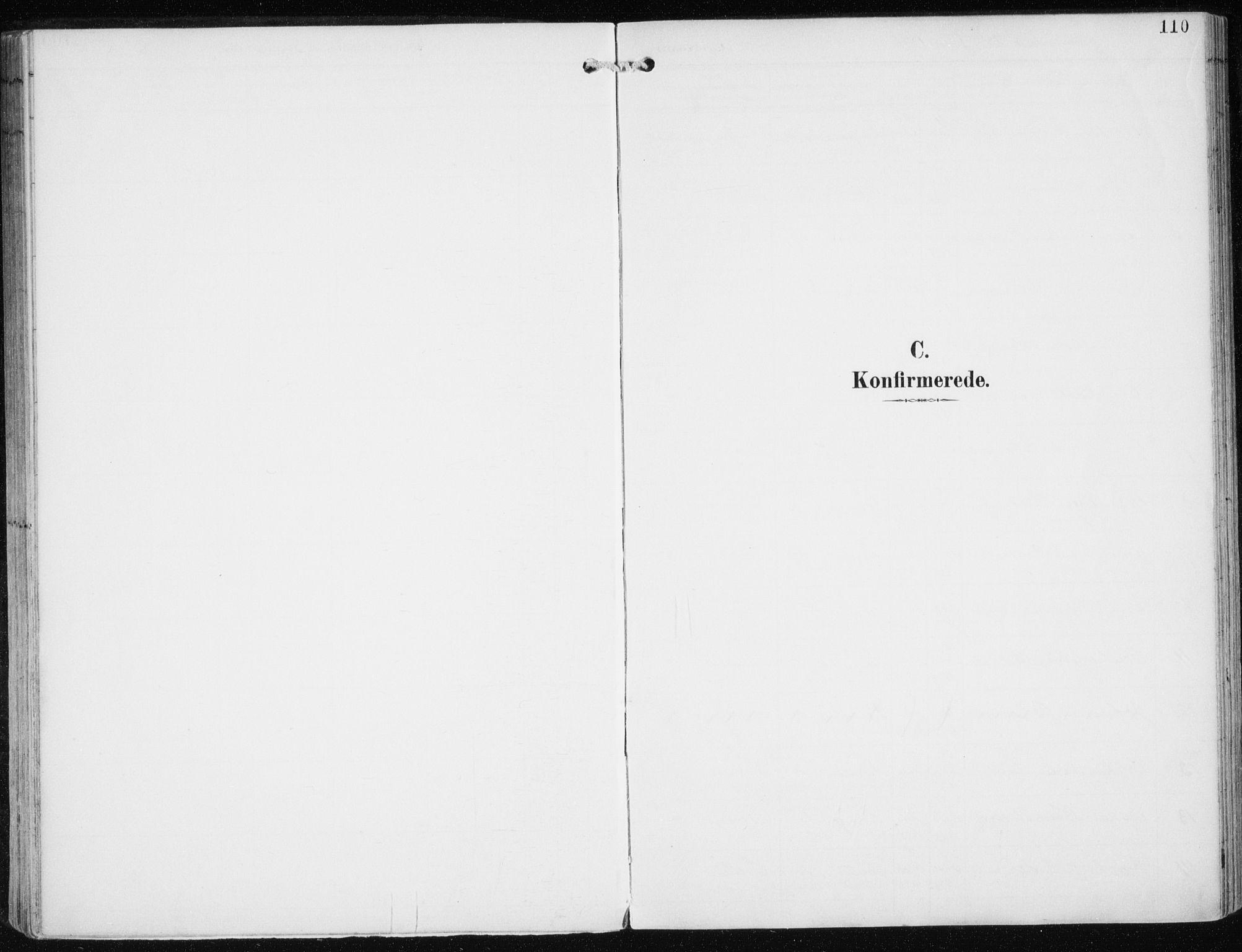 SATØ, Skjervøy sokneprestkontor, H/Ha/Haa/L0017kirke: Ministerialbok nr. 17, 1895-1911, s. 110