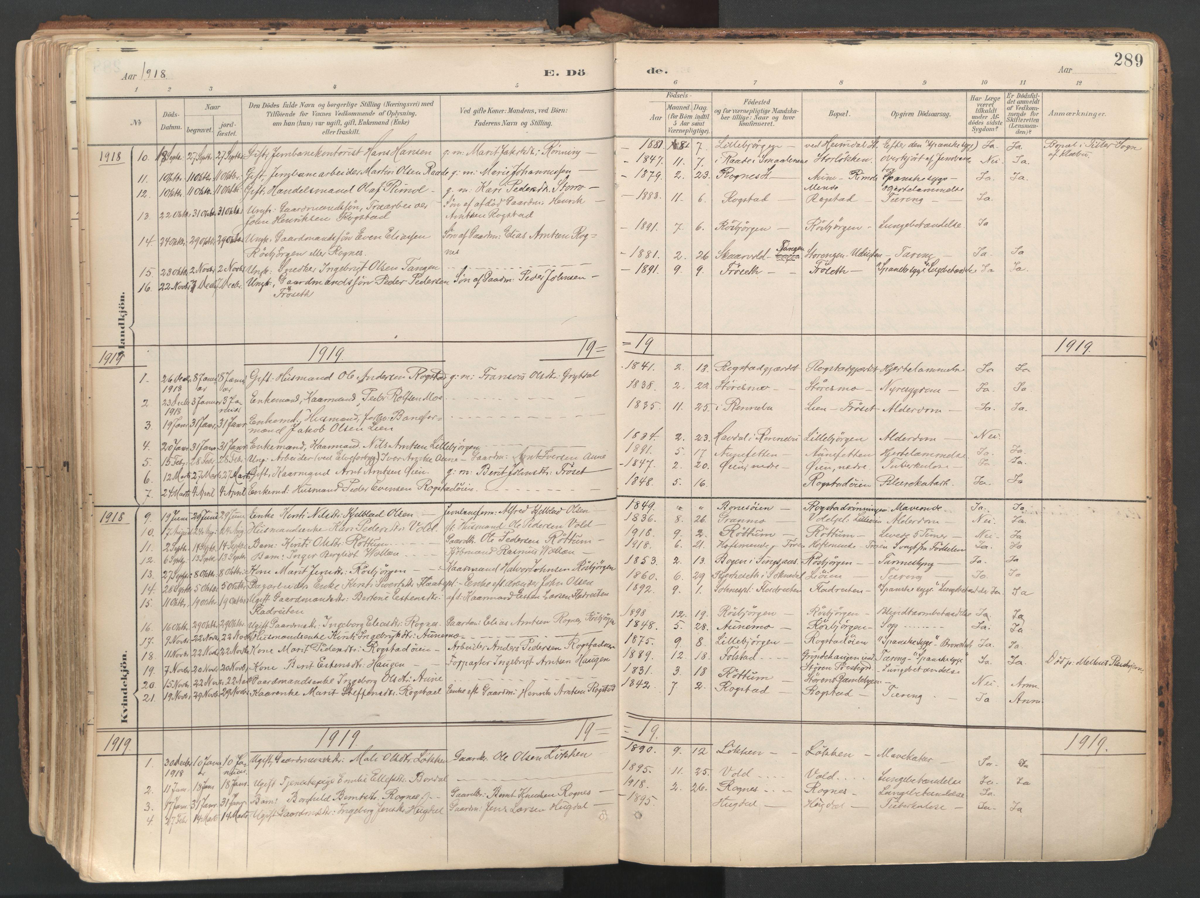SAT, Ministerialprotokoller, klokkerbøker og fødselsregistre - Sør-Trøndelag, 687/L1004: Ministerialbok nr. 687A10, 1891-1923, s. 289