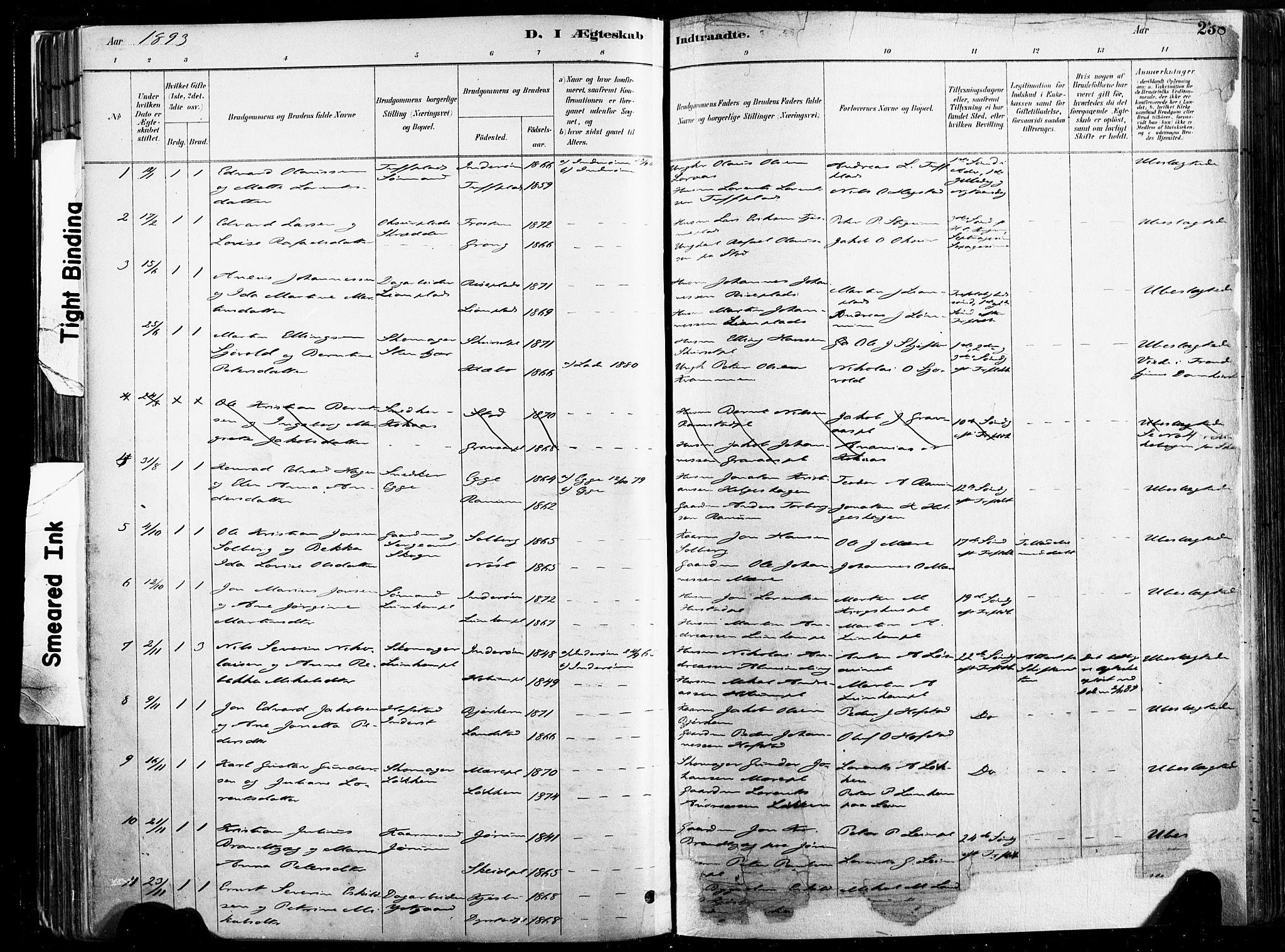 SAT, Ministerialprotokoller, klokkerbøker og fødselsregistre - Nord-Trøndelag, 735/L0351: Ministerialbok nr. 735A10, 1884-1908, s. 238