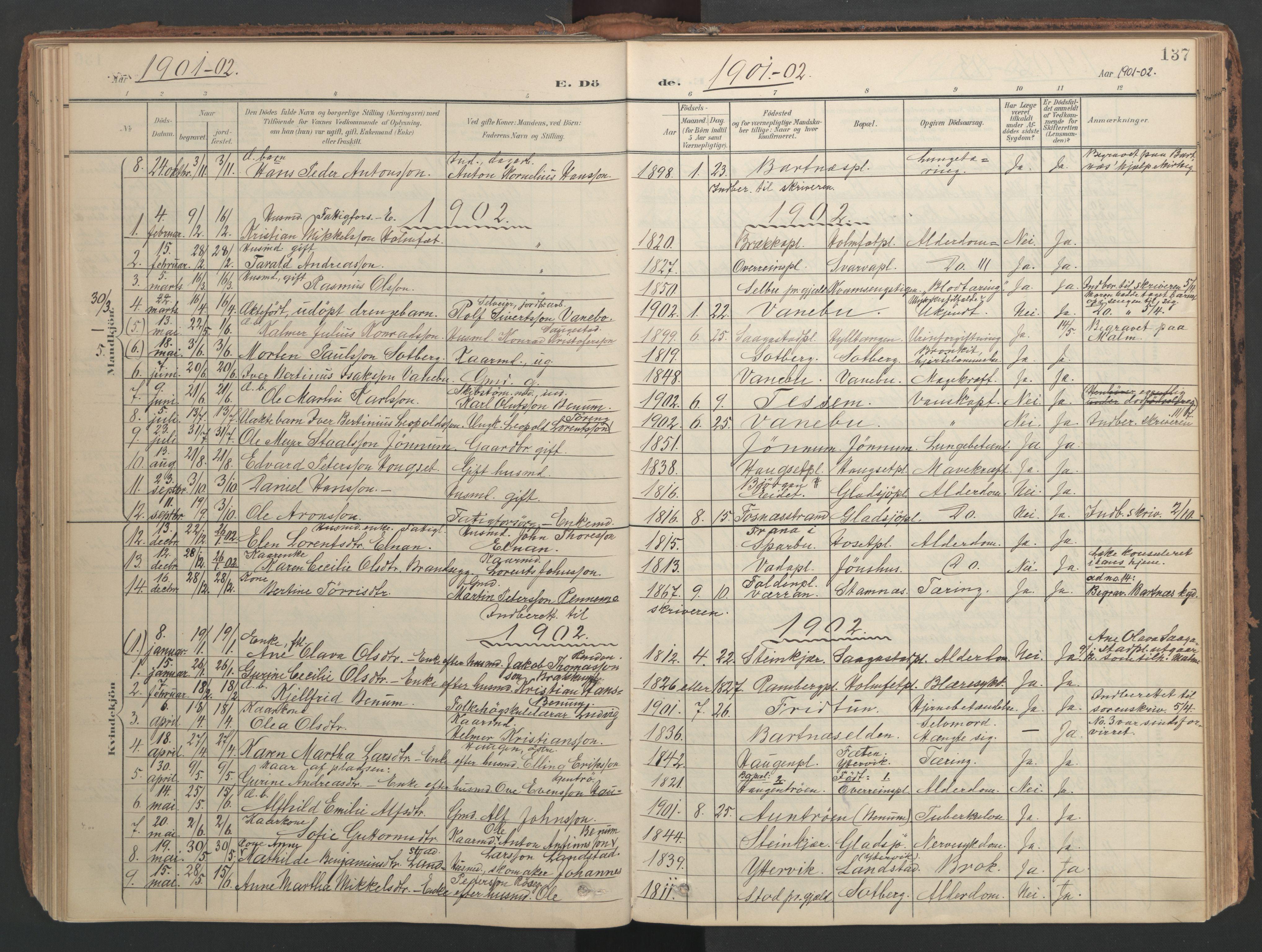 SAT, Ministerialprotokoller, klokkerbøker og fødselsregistre - Nord-Trøndelag, 741/L0397: Ministerialbok nr. 741A11, 1901-1911, s. 137