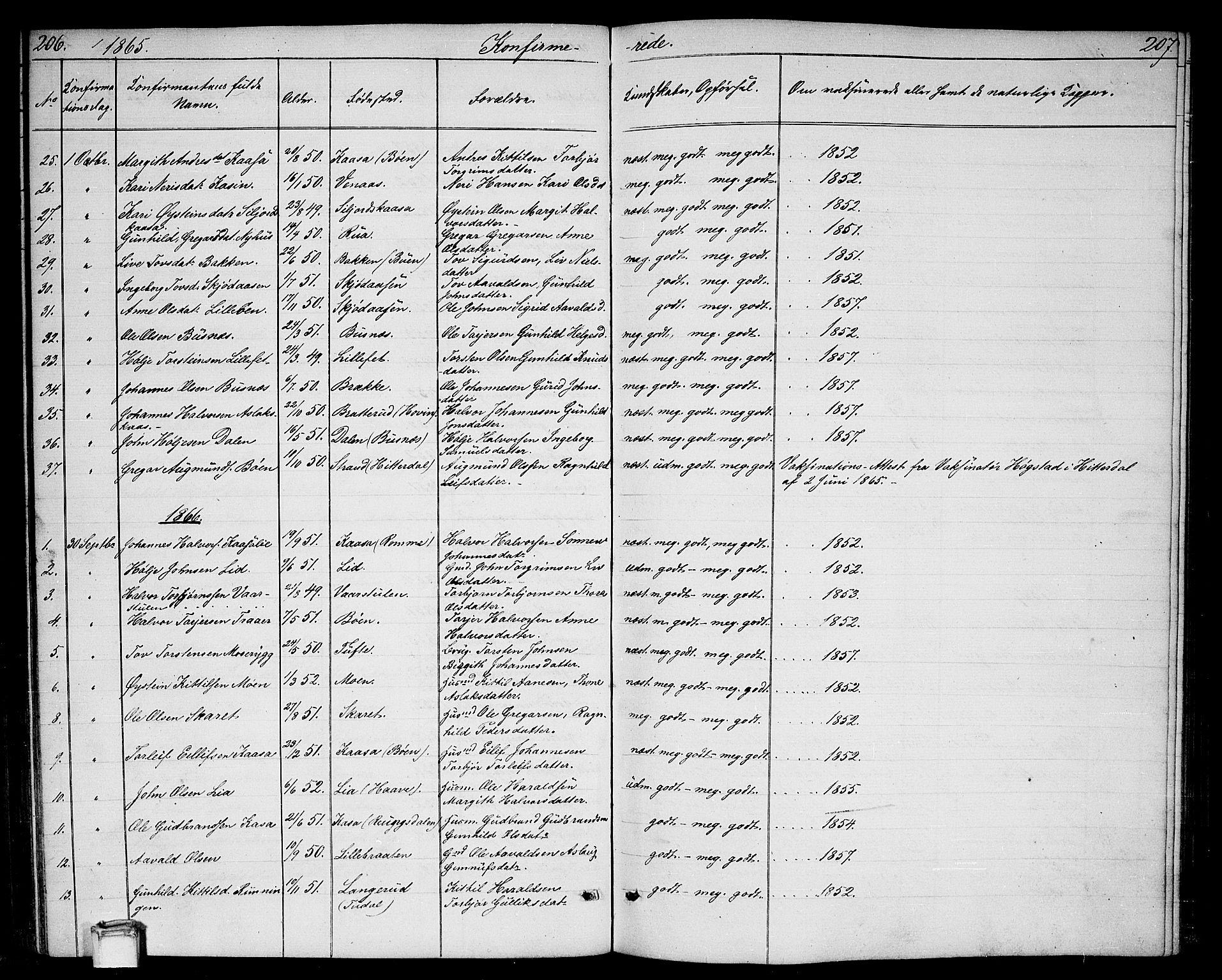 SAKO, Gransherad kirkebøker, G/Ga/L0002: Klokkerbok nr. I 2, 1854-1886, s. 206-207