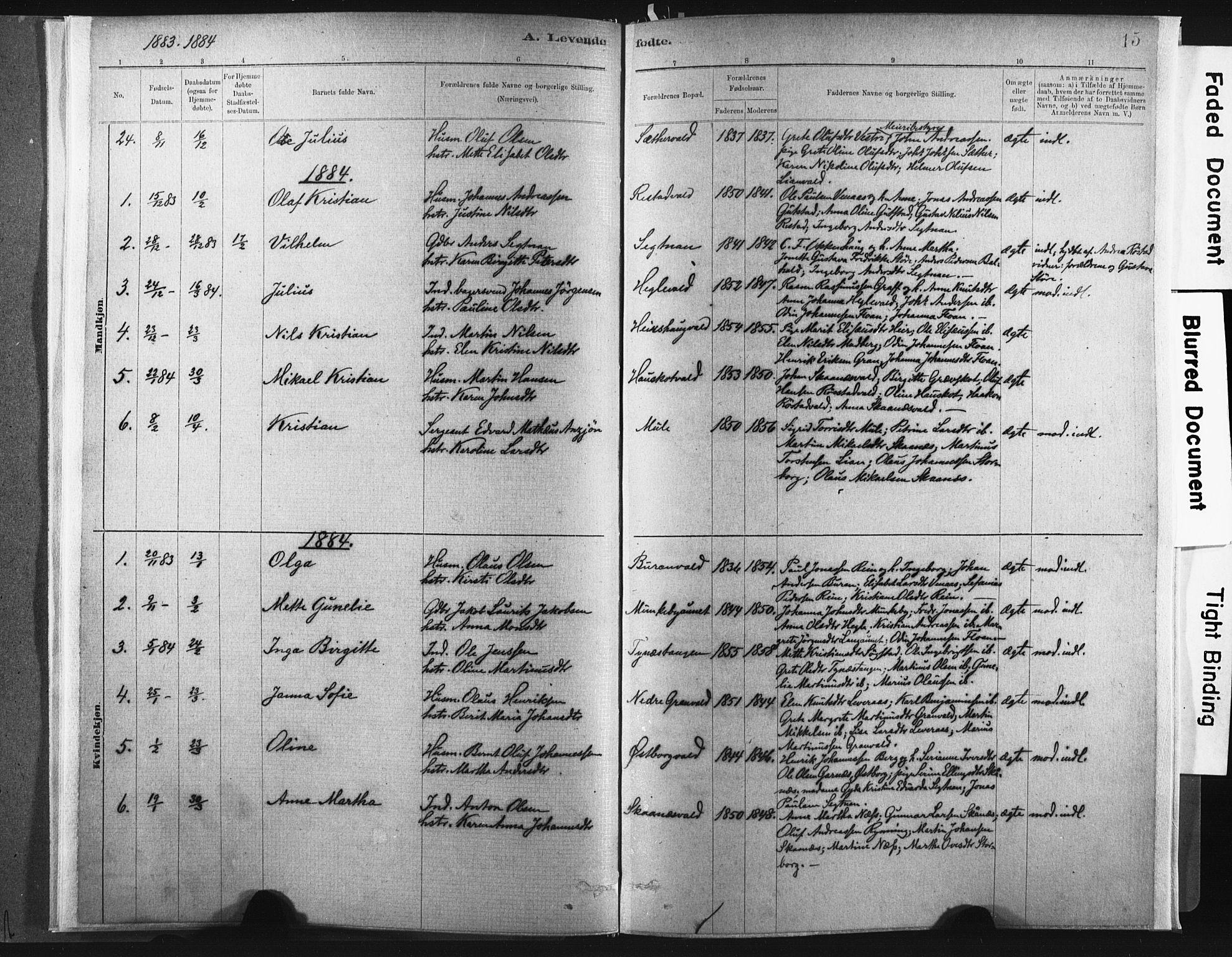 SAT, Ministerialprotokoller, klokkerbøker og fødselsregistre - Nord-Trøndelag, 721/L0207: Ministerialbok nr. 721A02, 1880-1911, s. 15