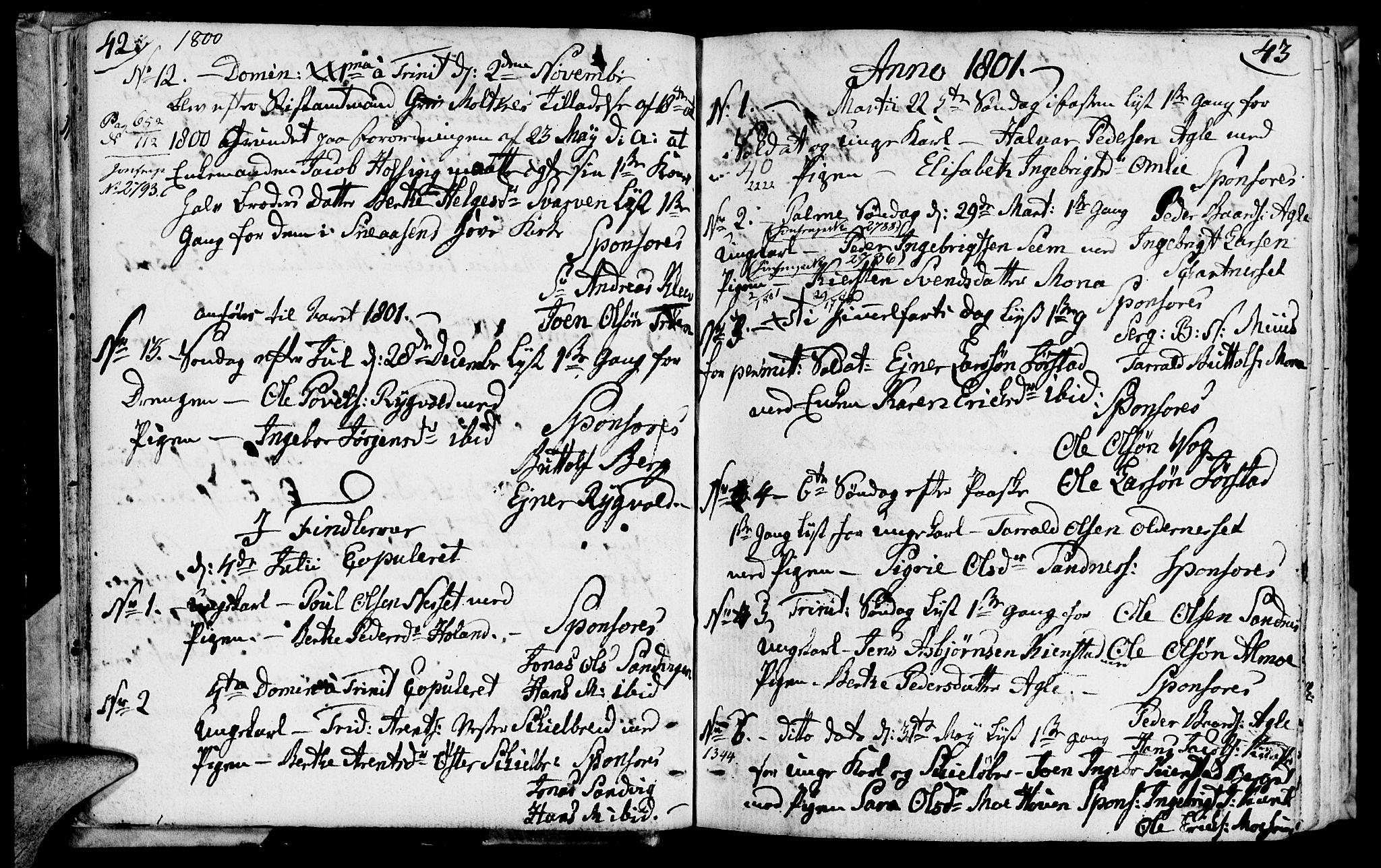SAT, Ministerialprotokoller, klokkerbøker og fødselsregistre - Nord-Trøndelag, 749/L0468: Ministerialbok nr. 749A02, 1787-1817, s. 42-43