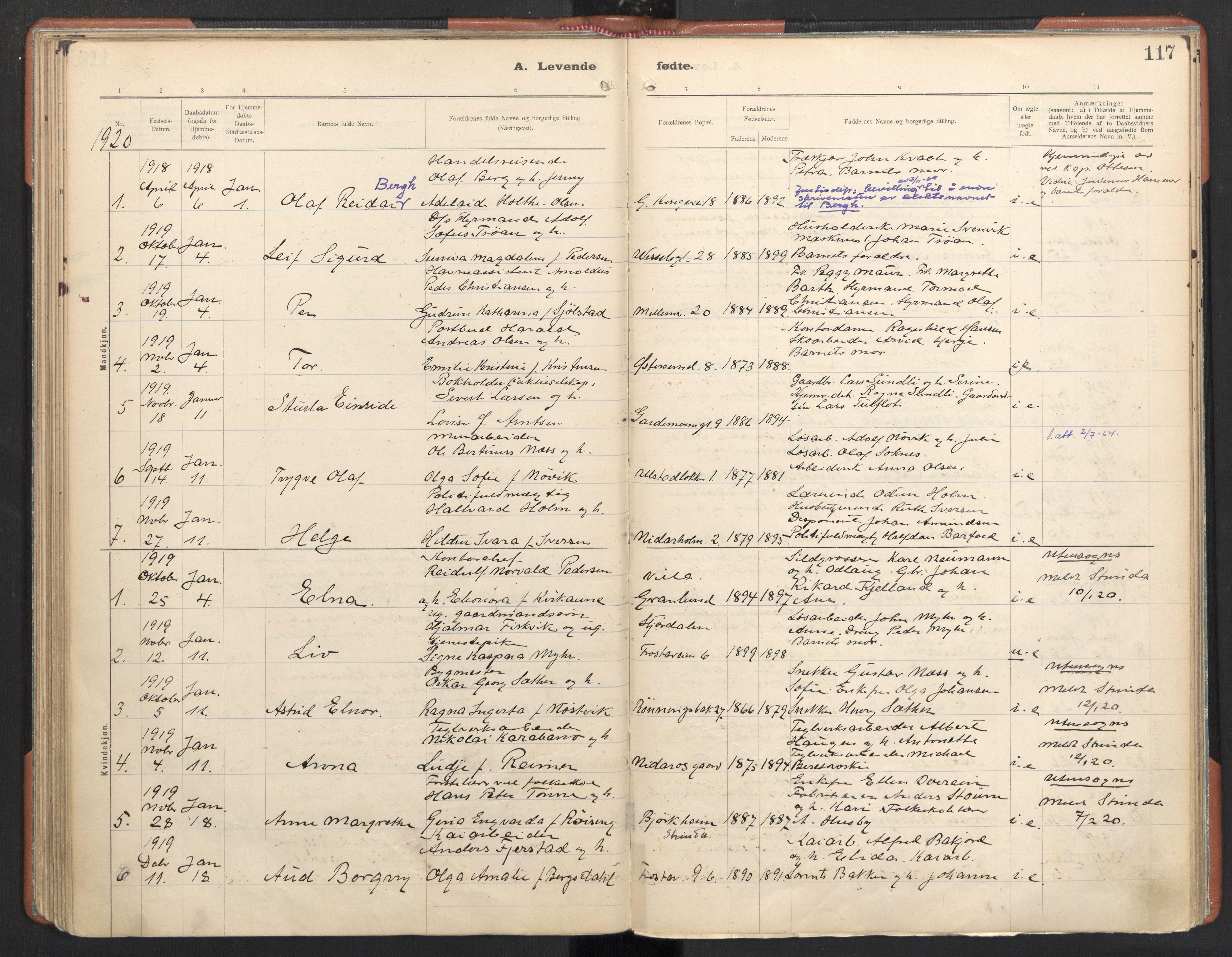 SAT, Ministerialprotokoller, klokkerbøker og fødselsregistre - Sør-Trøndelag, 605/L0246: Ministerialbok nr. 605A08, 1916-1920, s. 117
