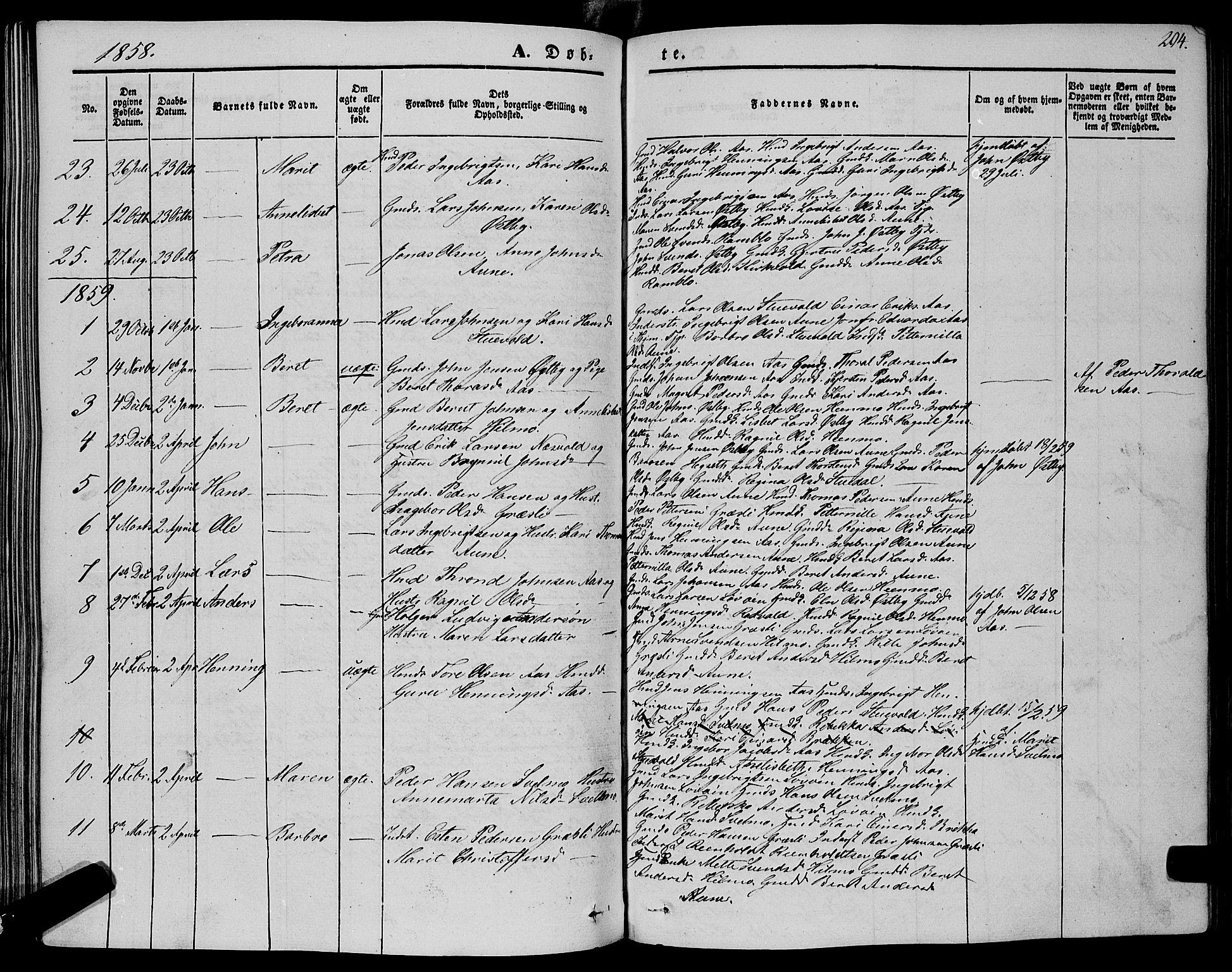 SAT, Ministerialprotokoller, klokkerbøker og fødselsregistre - Sør-Trøndelag, 695/L1146: Ministerialbok nr. 695A06 /2, 1843-1859, s. 204
