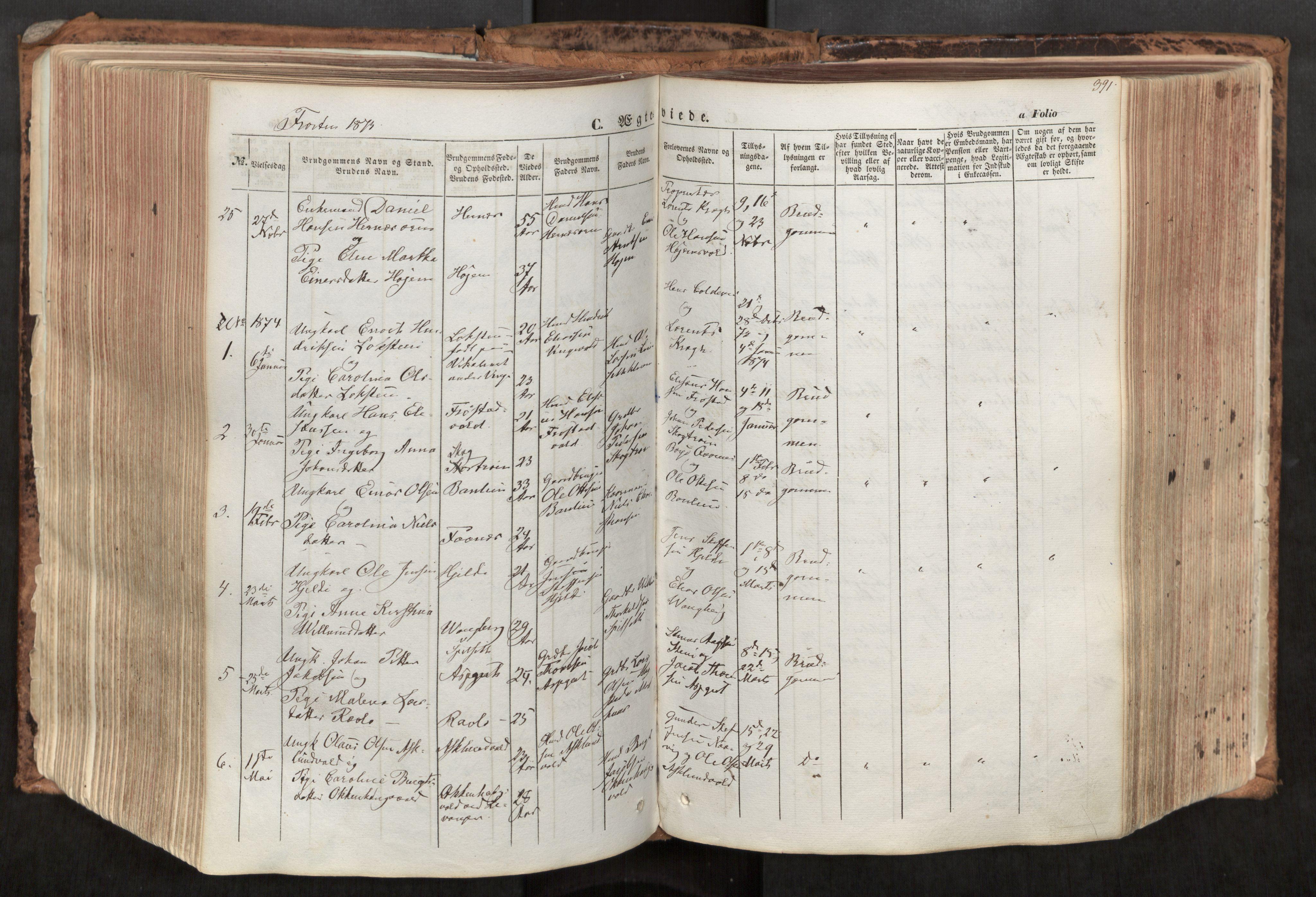 SAT, Ministerialprotokoller, klokkerbøker og fødselsregistre - Nord-Trøndelag, 713/L0116: Ministerialbok nr. 713A07, 1850-1877, s. 391
