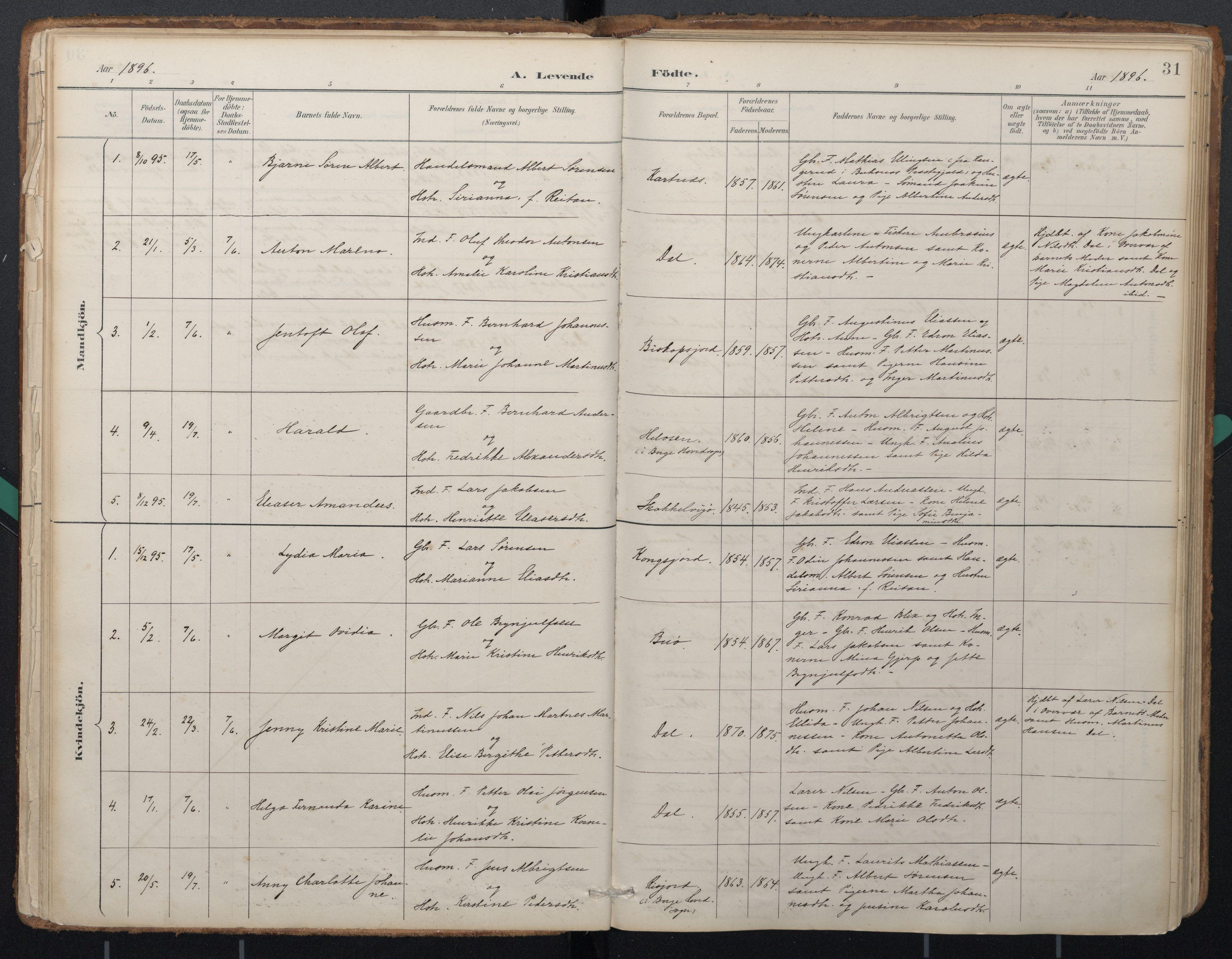 SAT, Ministerialprotokoller, klokkerbøker og fødselsregistre - Nordland, 884/L1193: Ministerialbok nr. 884A01, 1888-1905, s. 31