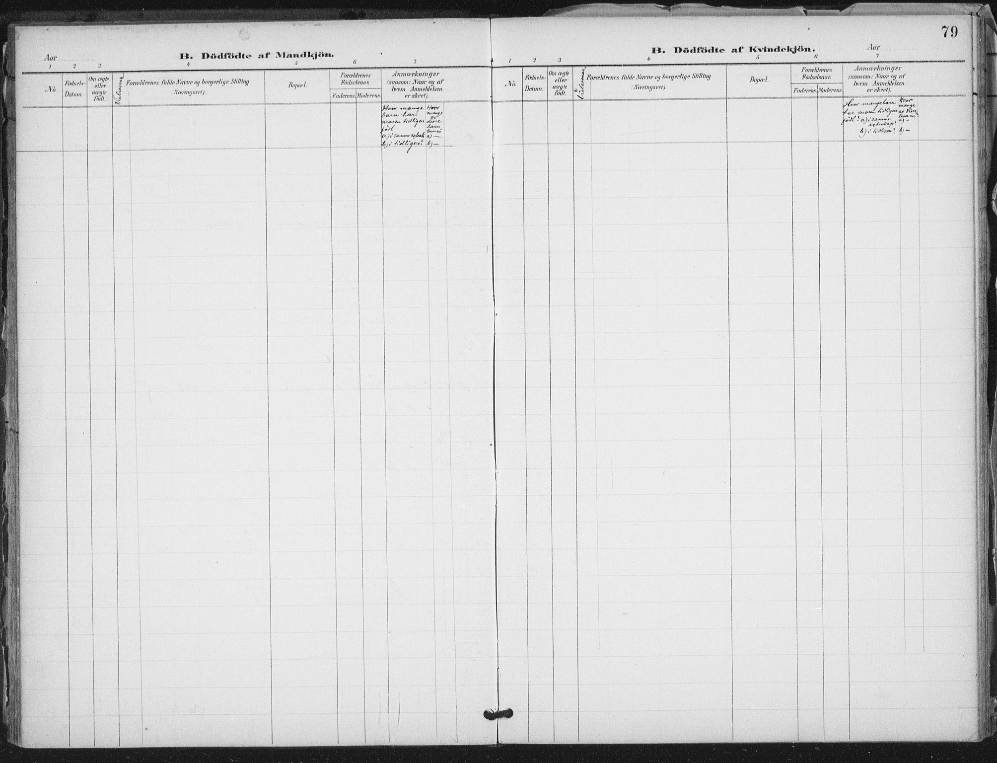 SAT, Ministerialprotokoller, klokkerbøker og fødselsregistre - Nord-Trøndelag, 712/L0101: Ministerialbok nr. 712A02, 1901-1916, s. 79