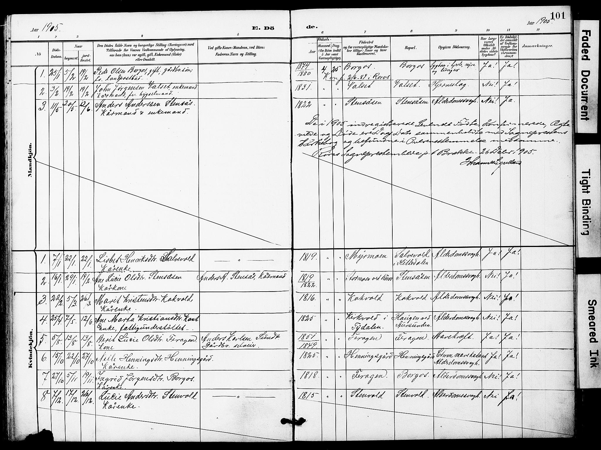 SAT, Ministerialprotokoller, klokkerbøker og fødselsregistre - Sør-Trøndelag, 683/L0950: Klokkerbok nr. 683C02, 1897-1918, s. 101