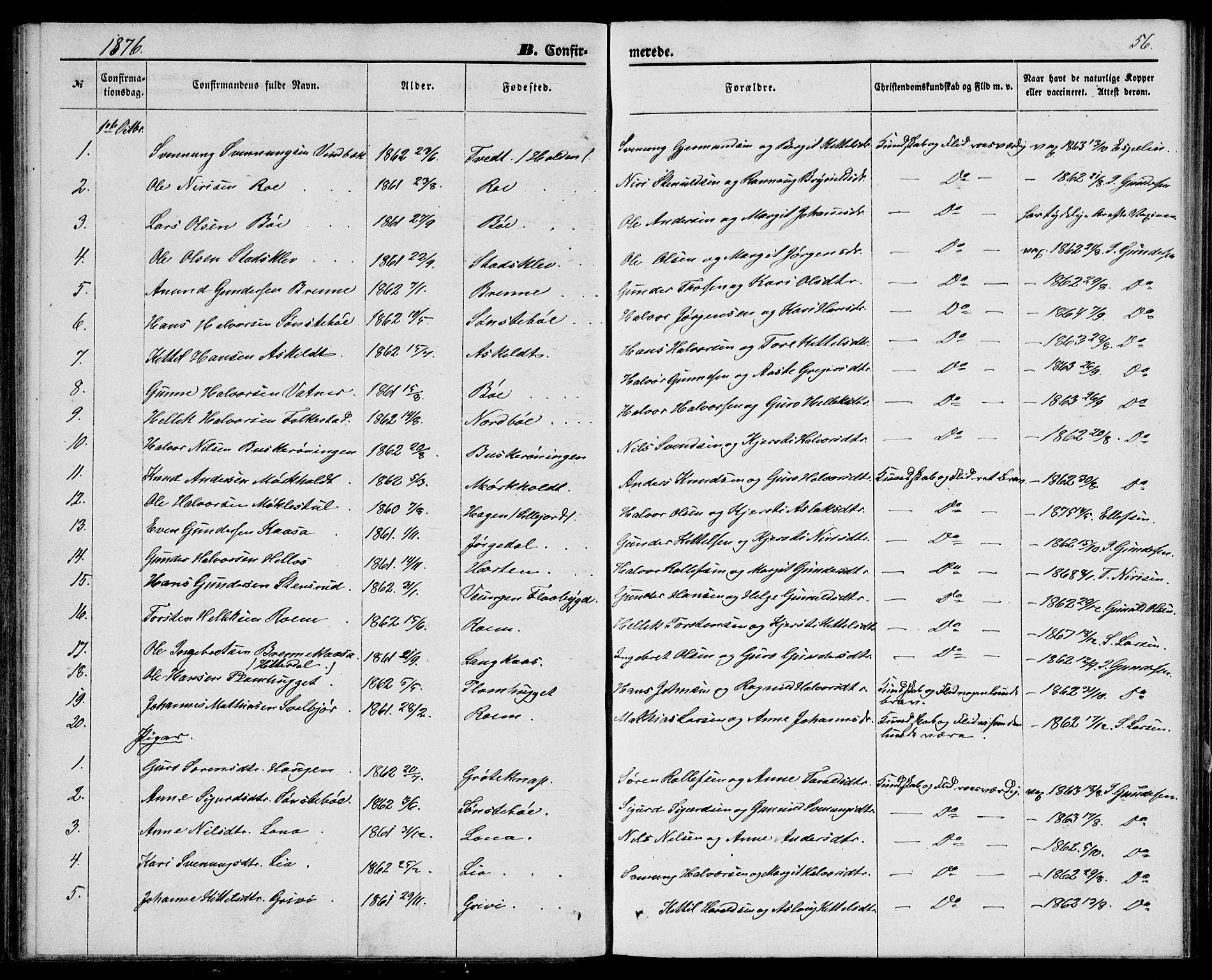 SAKO, Bø kirkebøker, G/Ga/L0004: Klokkerbok nr. 4, 1876-1882, s. 56