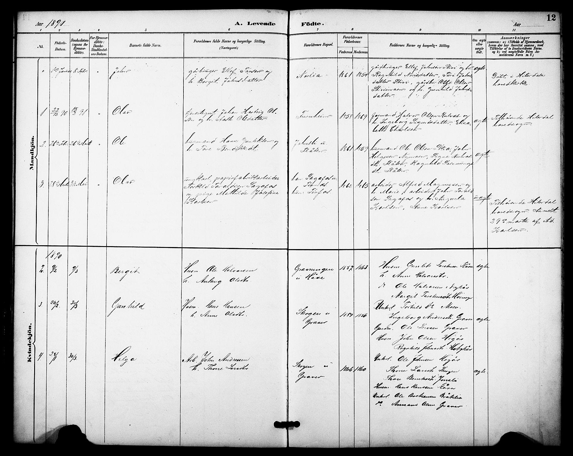 SAKO, Heddal kirkebøker, F/Fb/L0001: Ministerialbok nr. II 1, 1884-1910, s. 12