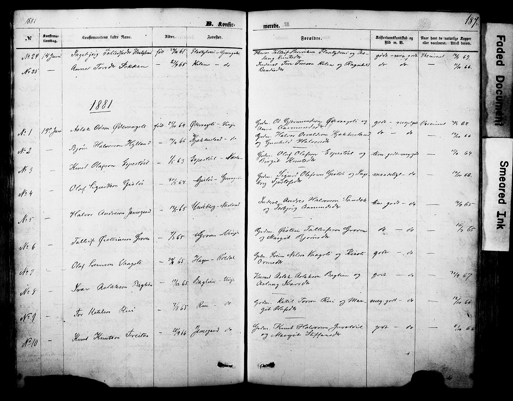 SAKO, Vinje kirkebøker, F/Fa/L0005: Ministerialbok nr. I 5, 1870-1886, s. 187