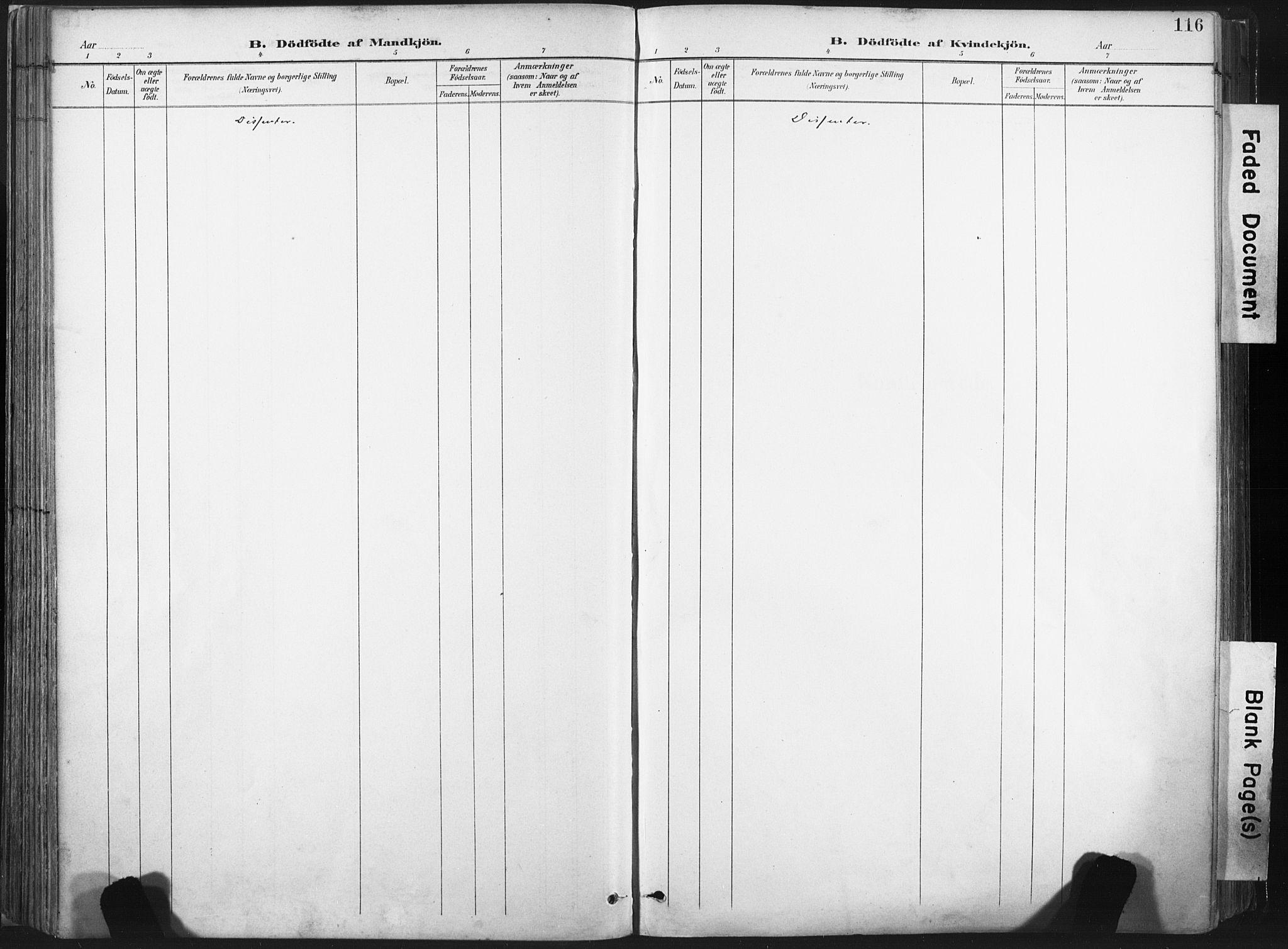 SAT, Ministerialprotokoller, klokkerbøker og fødselsregistre - Nord-Trøndelag, 717/L0162: Ministerialbok nr. 717A12, 1898-1923, s. 116