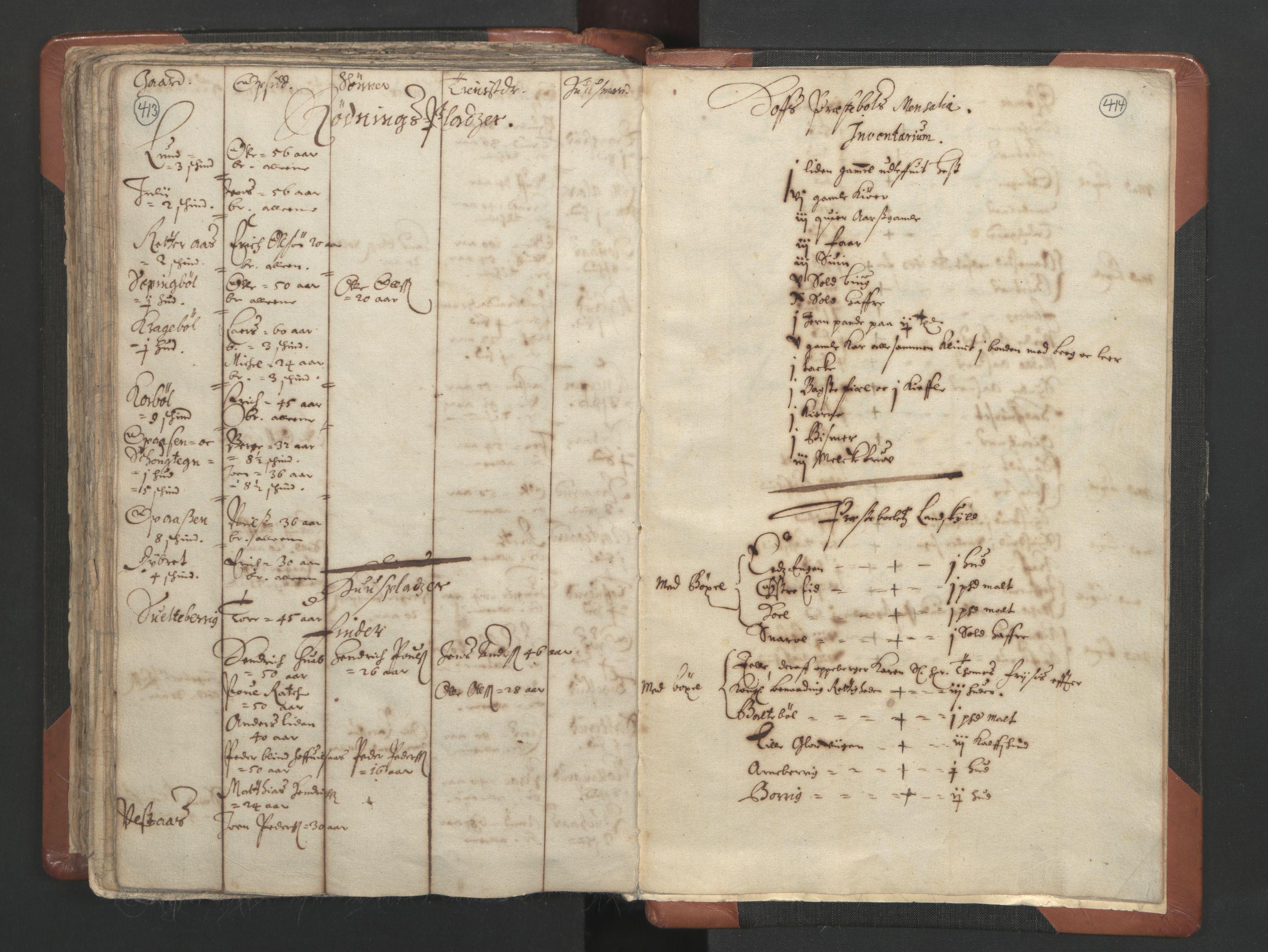 RA, Sogneprestenes manntall 1664-1666, nr. 4: Øvre Romerike prosti, 1664-1666, s. 413-414