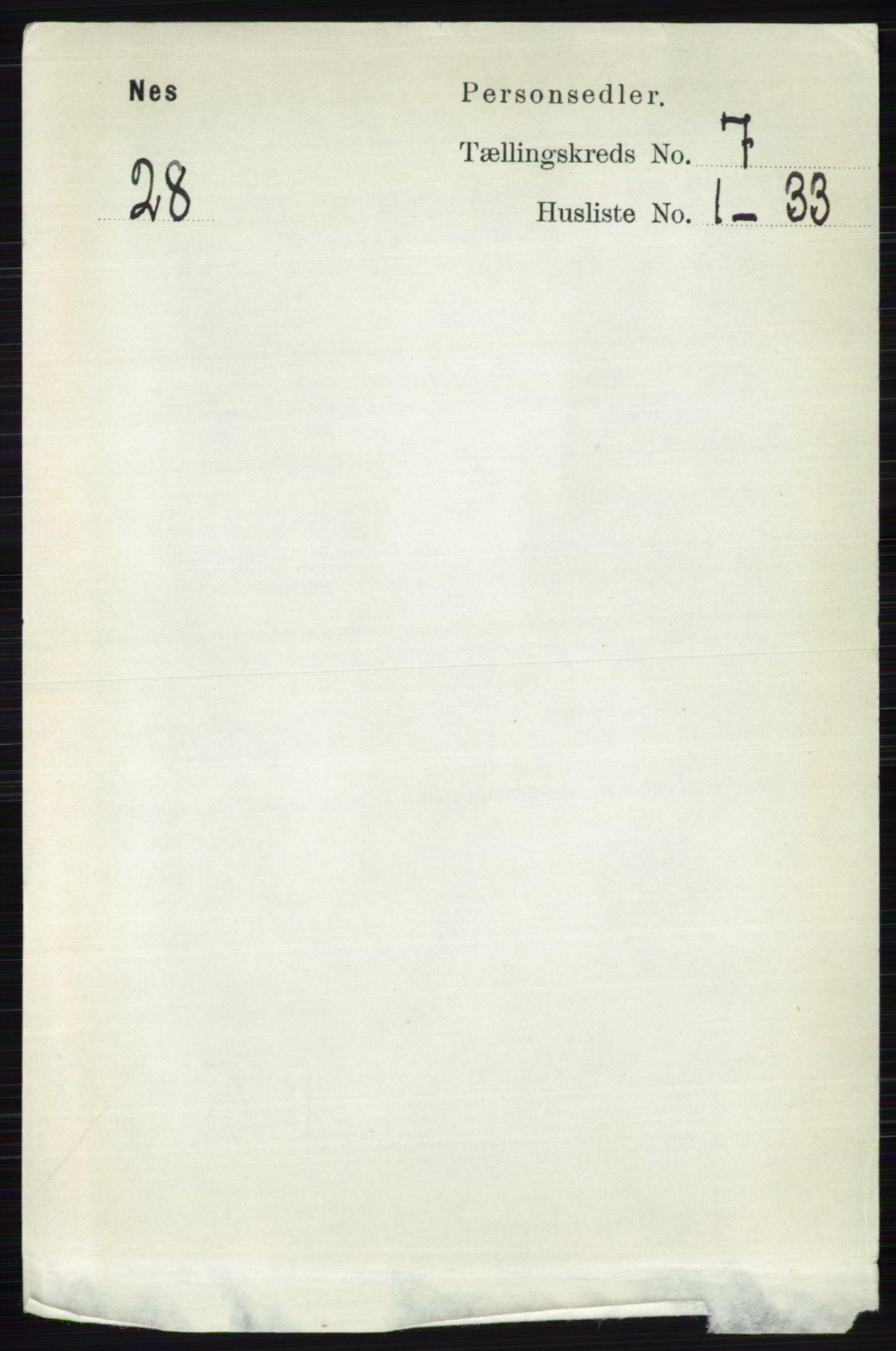 RA, Folketelling 1891 for 0411 Nes herred, 1891, s. 3924