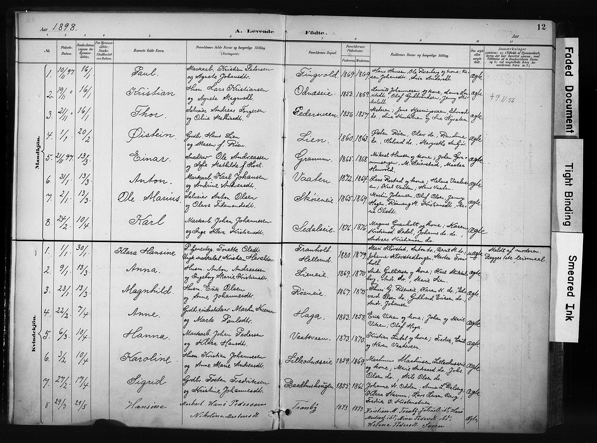 SAH, Søndre Land prestekontor, K/L0004: Ministerialbok nr. 4, 1895-1904, s. 12