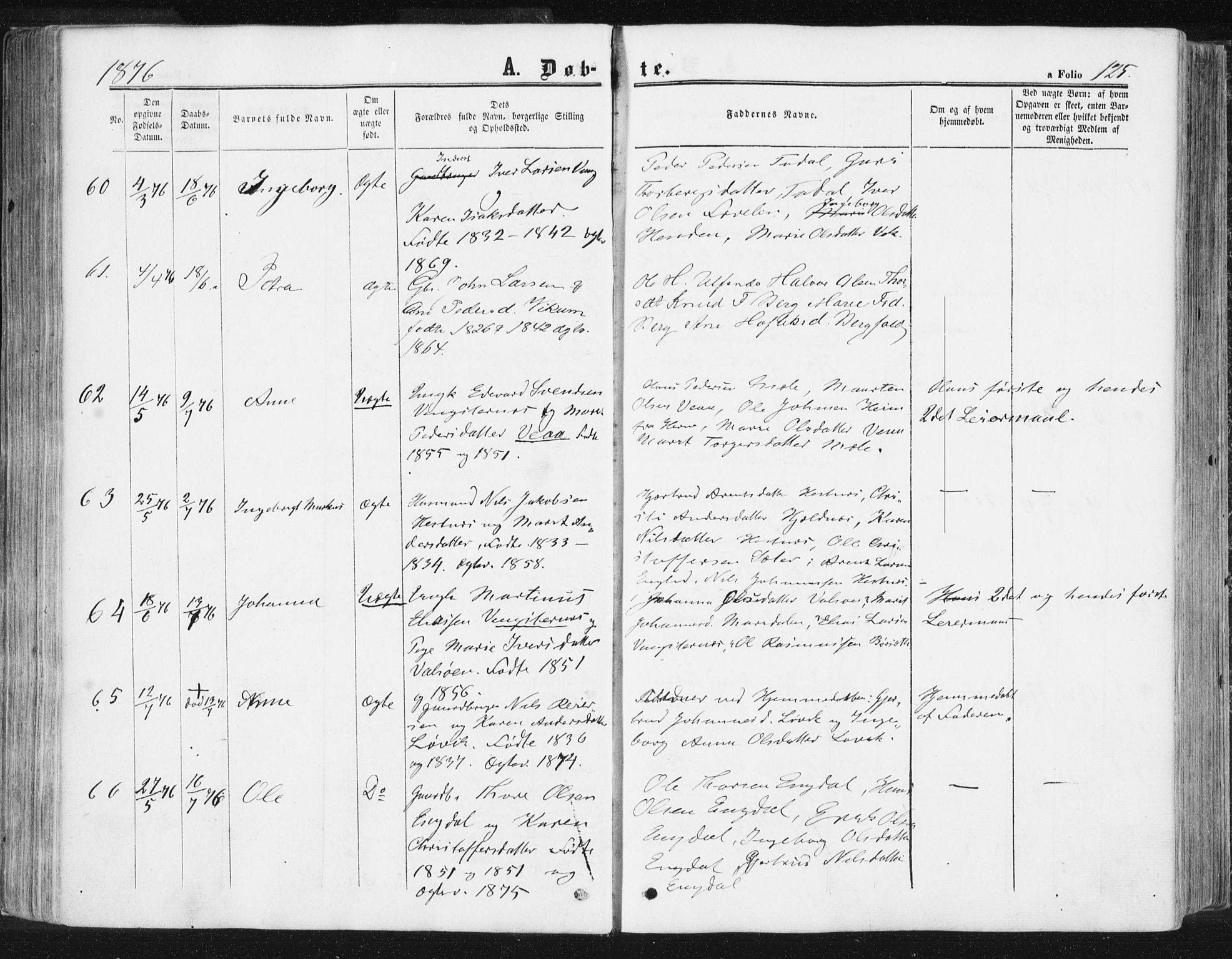 SAT, Ministerialprotokoller, klokkerbøker og fødselsregistre - Møre og Romsdal, 578/L0905: Ministerialbok nr. 578A04, 1859-1877, s. 125