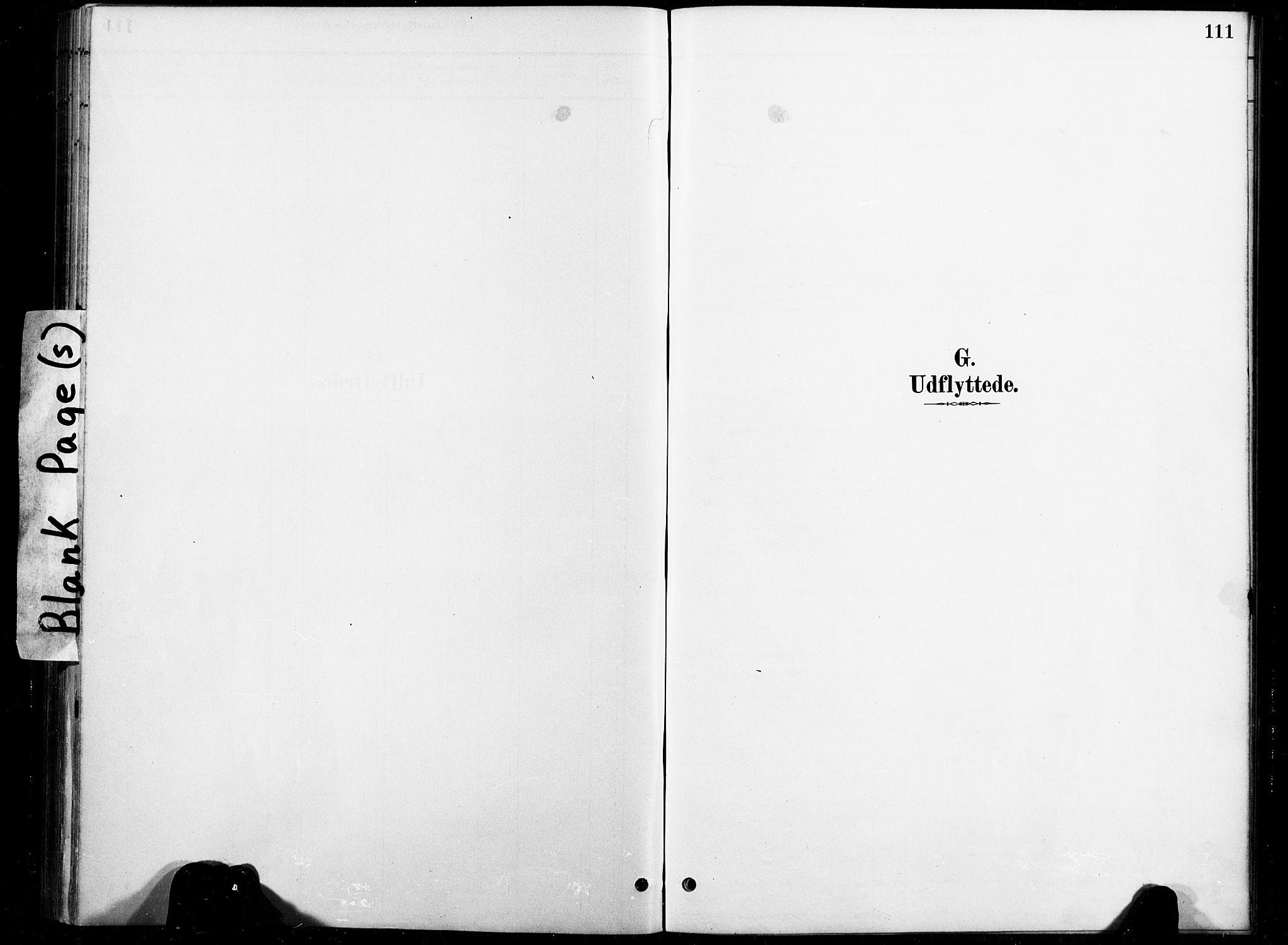 SAT, Ministerialprotokoller, klokkerbøker og fødselsregistre - Nord-Trøndelag, 738/L0364: Ministerialbok nr. 738A01, 1884-1902, s. 111