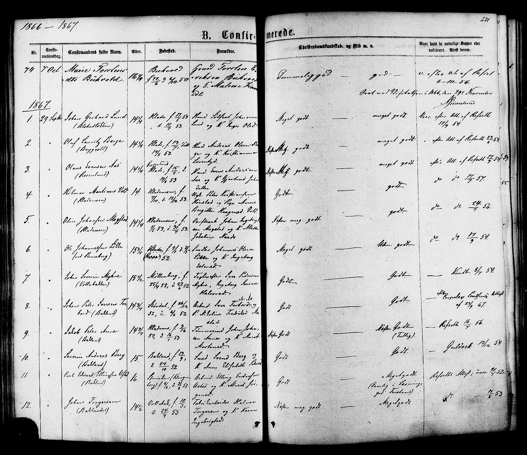 SAT, Ministerialprotokoller, klokkerbøker og fødselsregistre - Sør-Trøndelag, 606/L0293: Ministerialbok nr. 606A08, 1866-1877, s. 221