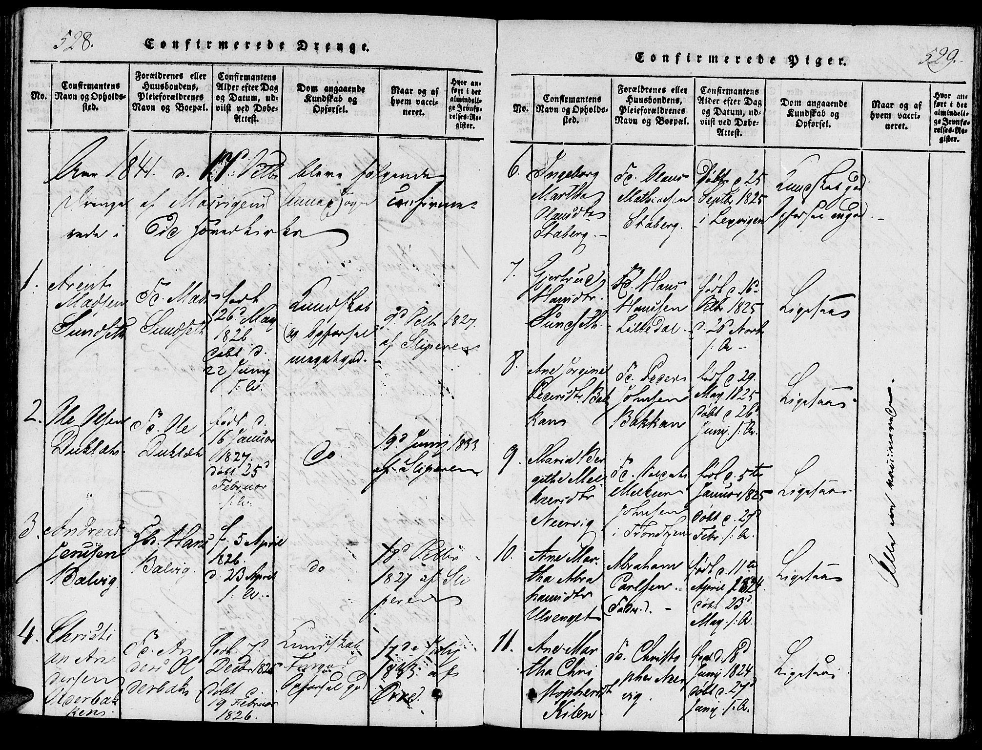 SAT, Ministerialprotokoller, klokkerbøker og fødselsregistre - Nord-Trøndelag, 733/L0322: Ministerialbok nr. 733A01, 1817-1842, s. 528-529