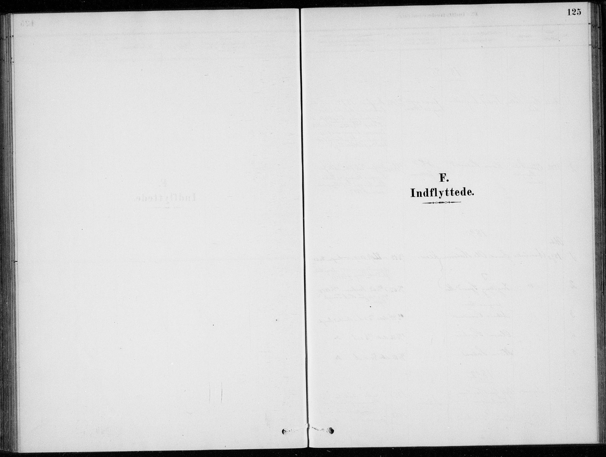 SAKO, Sigdal kirkebøker, F/Fc/L0001: Ministerialbok nr. III 1, 1879-1893, s. 125