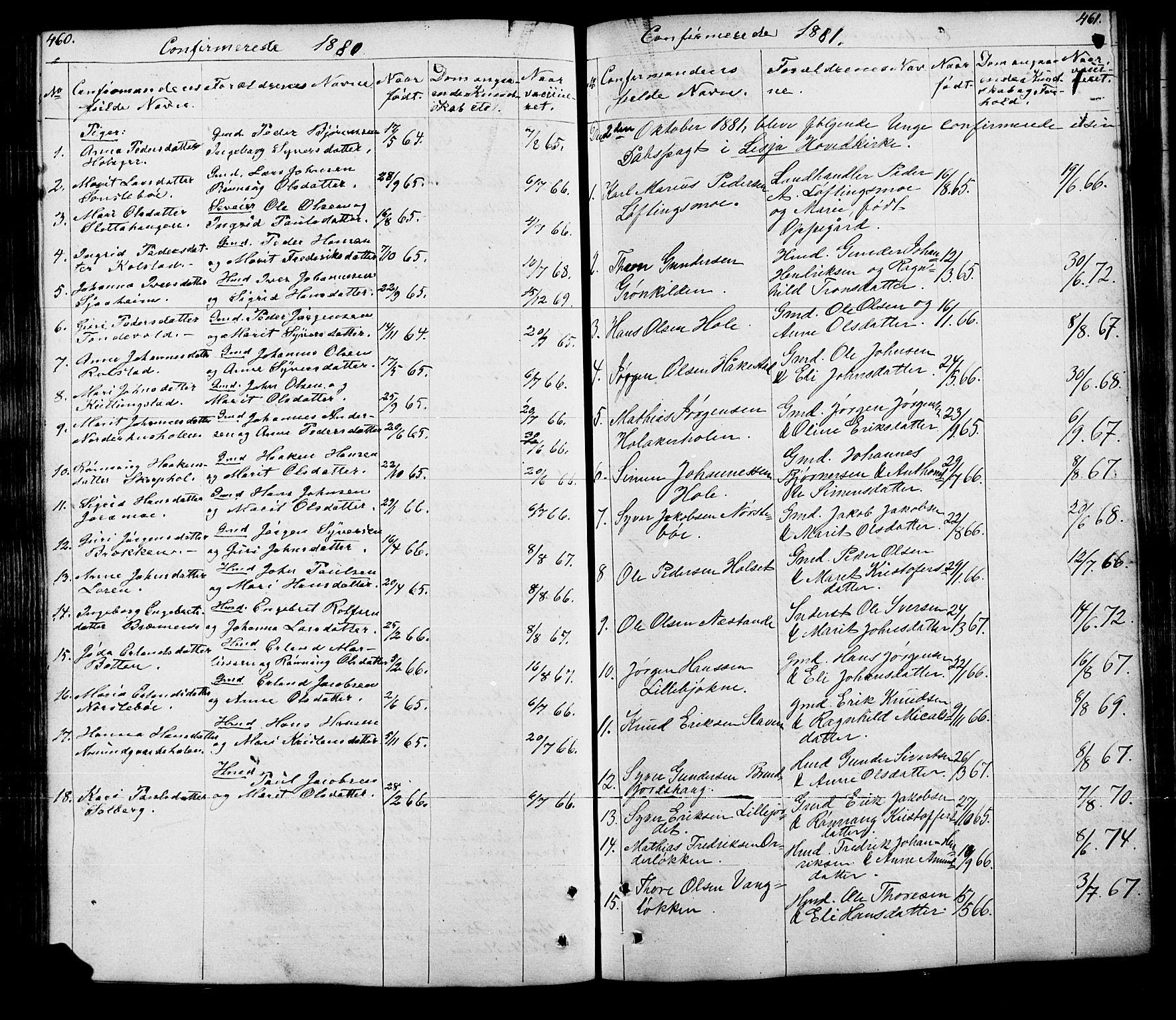 SAH, Lesja prestekontor, Klokkerbok nr. 5, 1850-1894, s. 460-461
