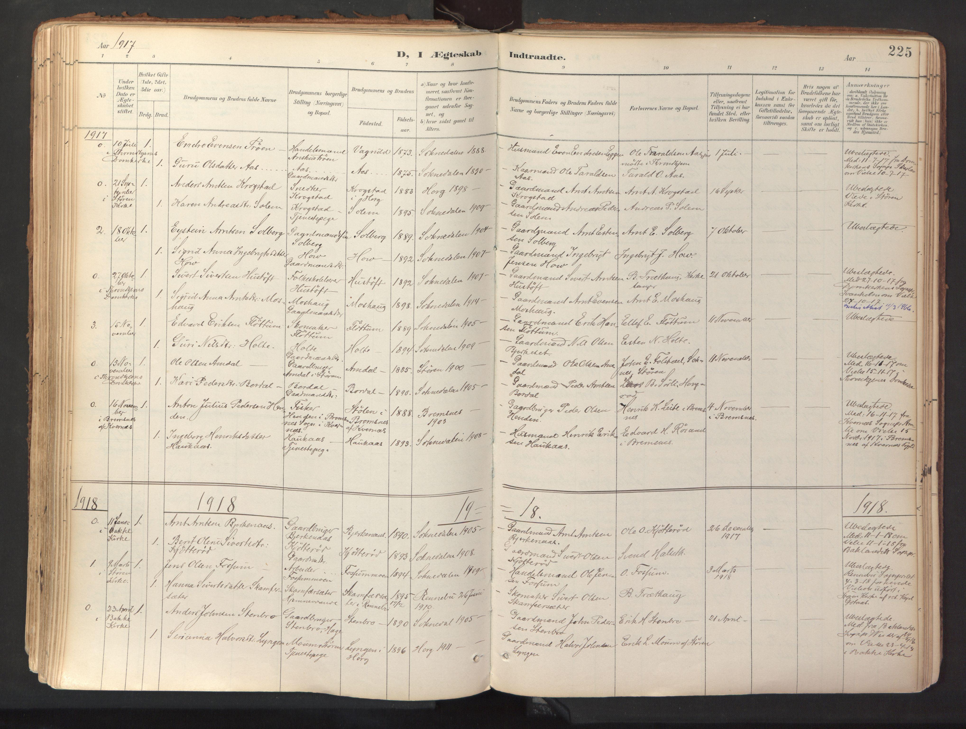 SAT, Ministerialprotokoller, klokkerbøker og fødselsregistre - Sør-Trøndelag, 689/L1041: Ministerialbok nr. 689A06, 1891-1923, s. 225